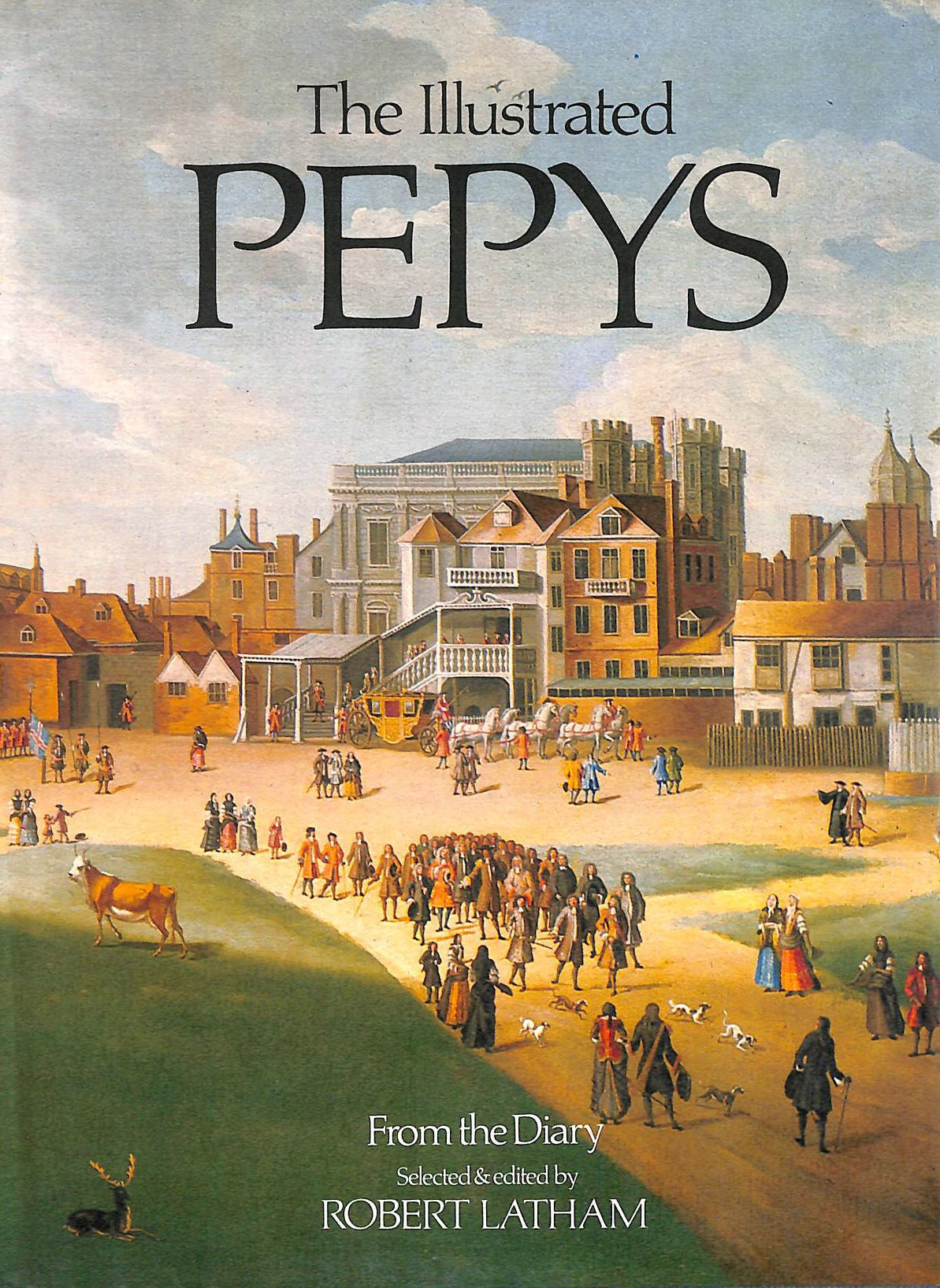 Image for The Illustrated Pepys: Extracts from the Diary