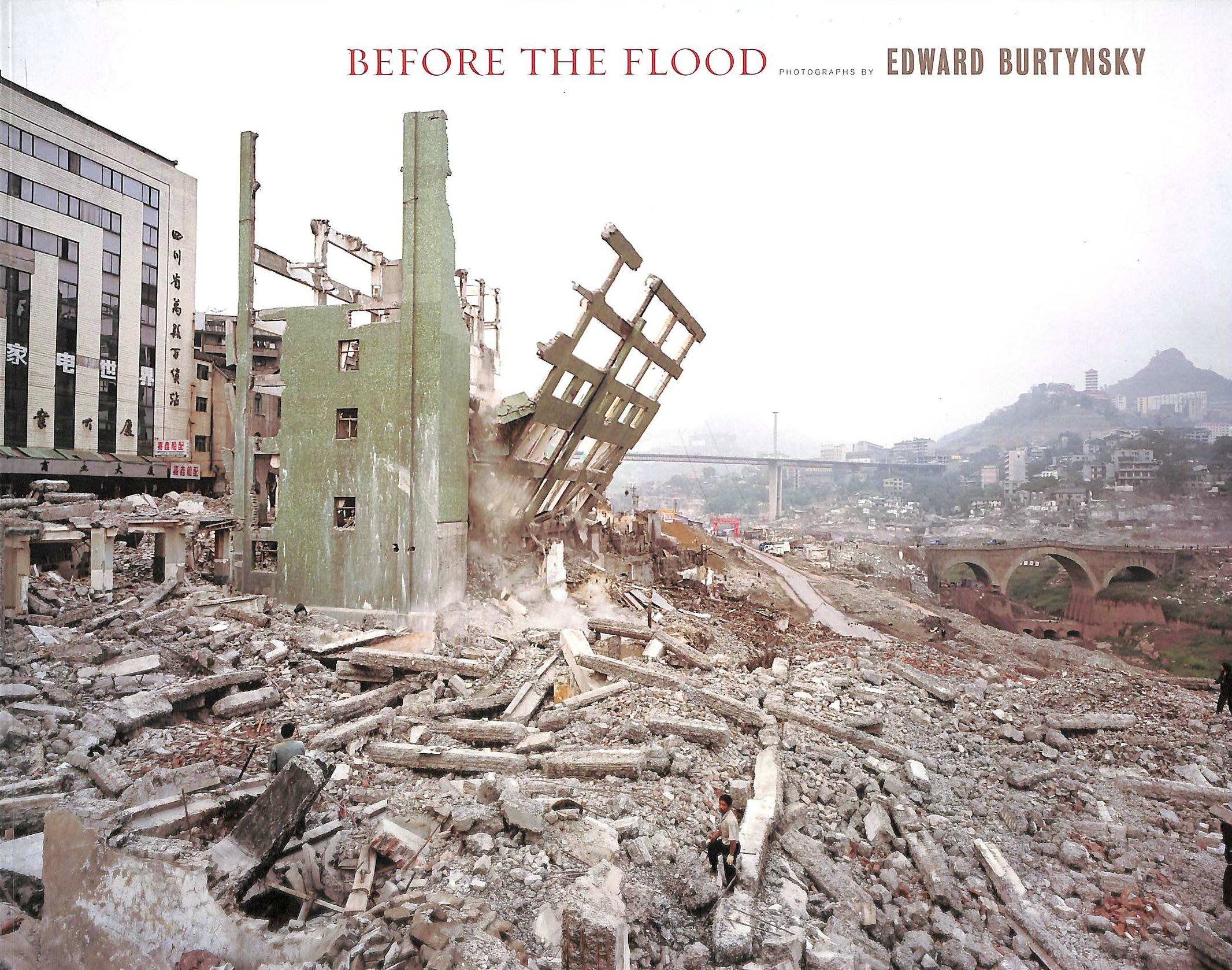 Image for Before the Flood