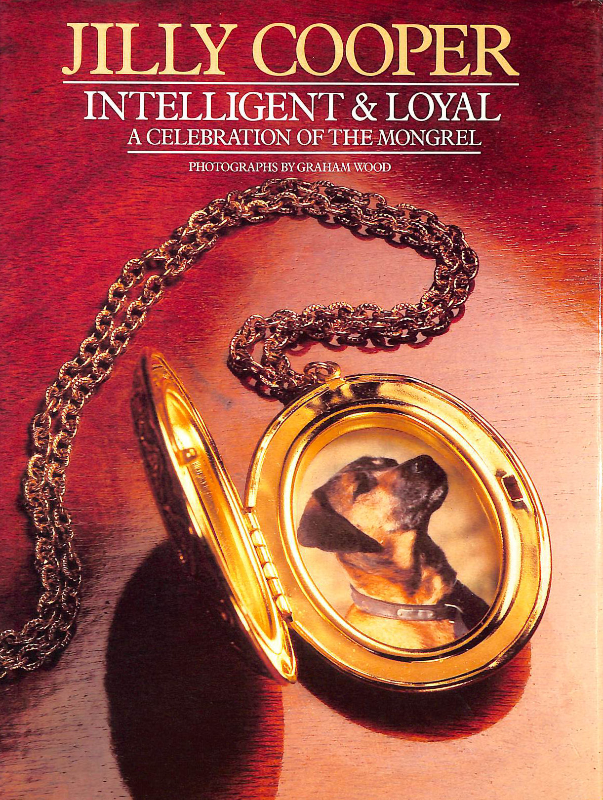 Image for INTELLIGENT AND LOYAL. A CELEBRATION OF THE MONGREL.