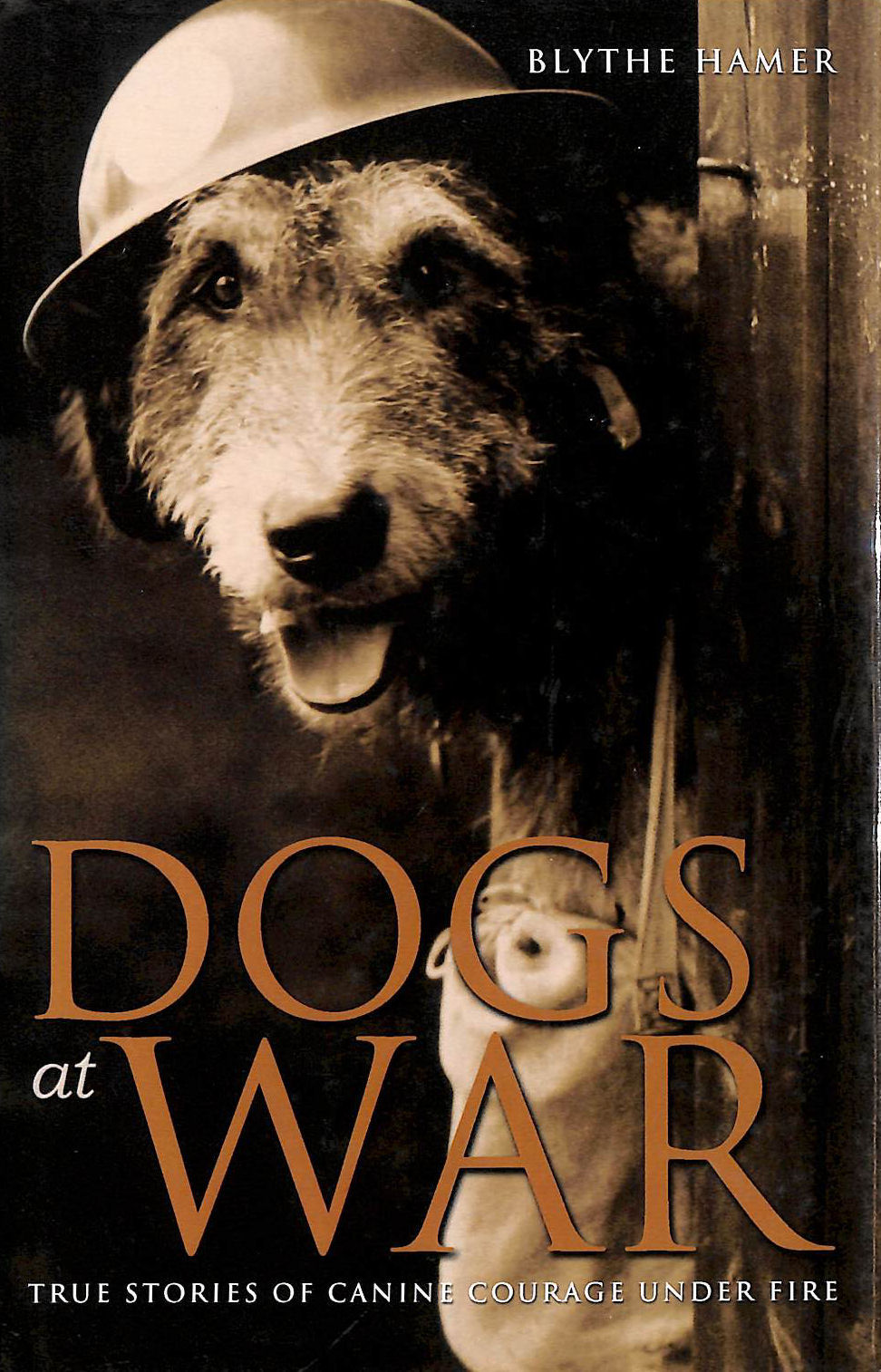 Image for Dogs at War: True Stories of Canine Courage under Fire