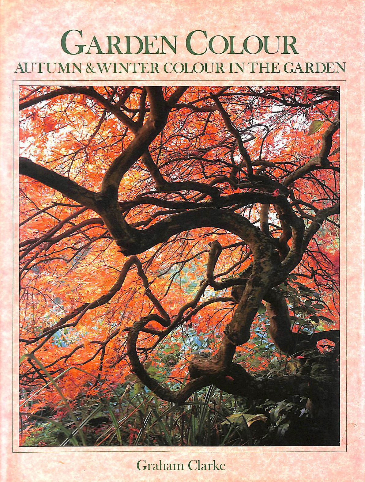Image for Garden Colour: Autumn and Winter Colour in the Garden