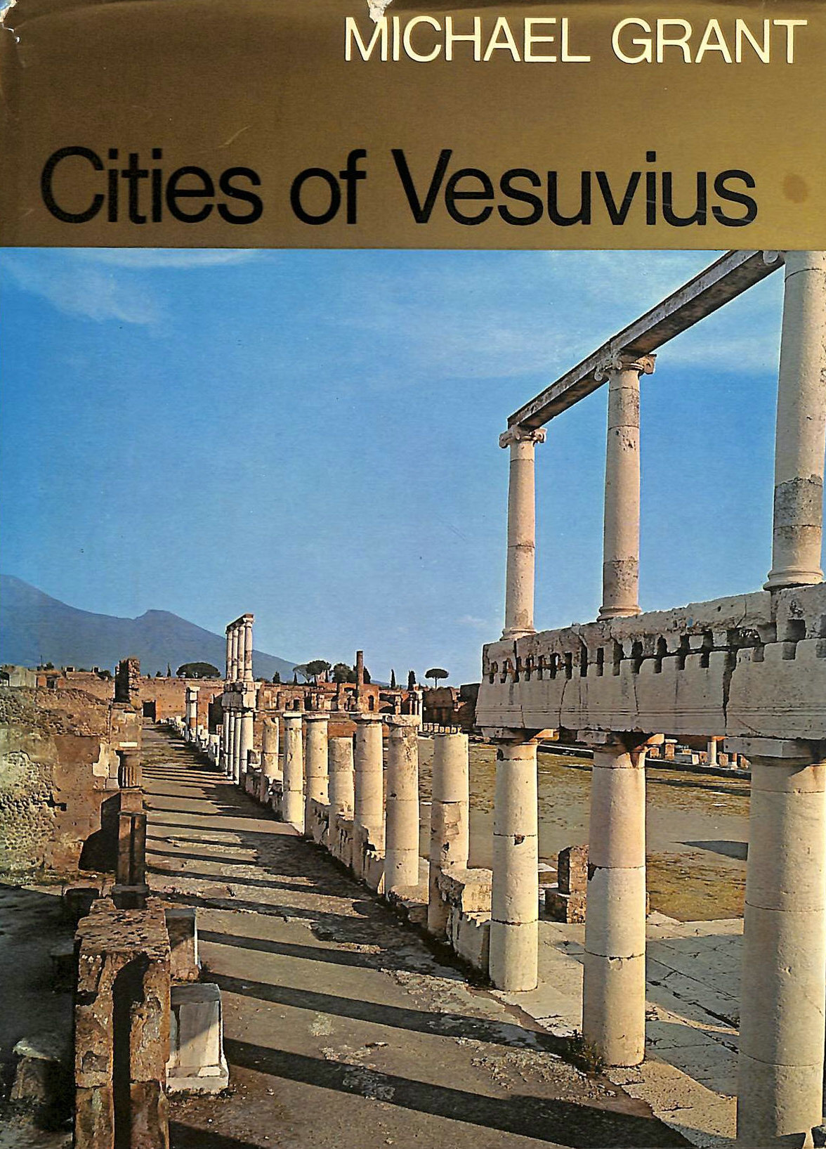 Image for Cities of Vesuvius: Pompeii and Herculaneum
