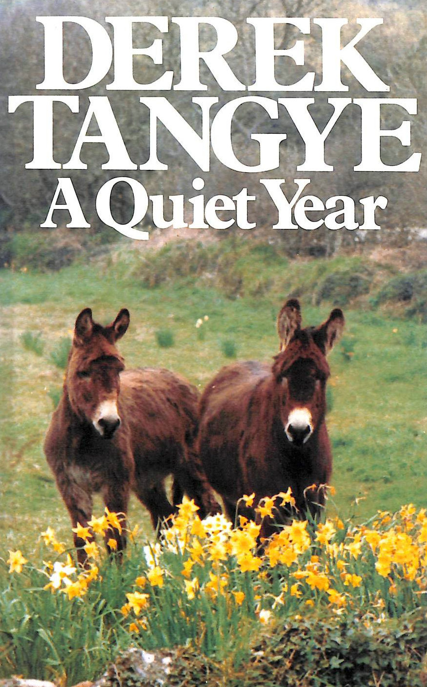Image for A Quiet Year