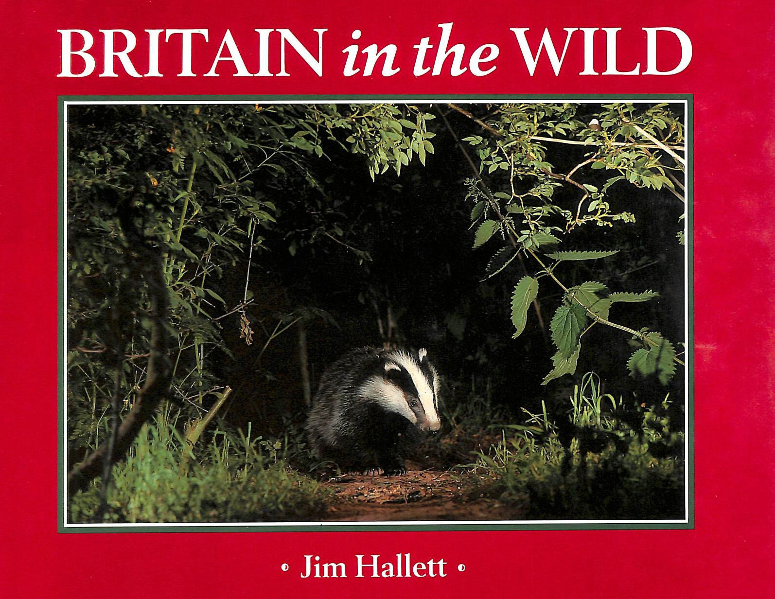 Image for Britain in the Wild