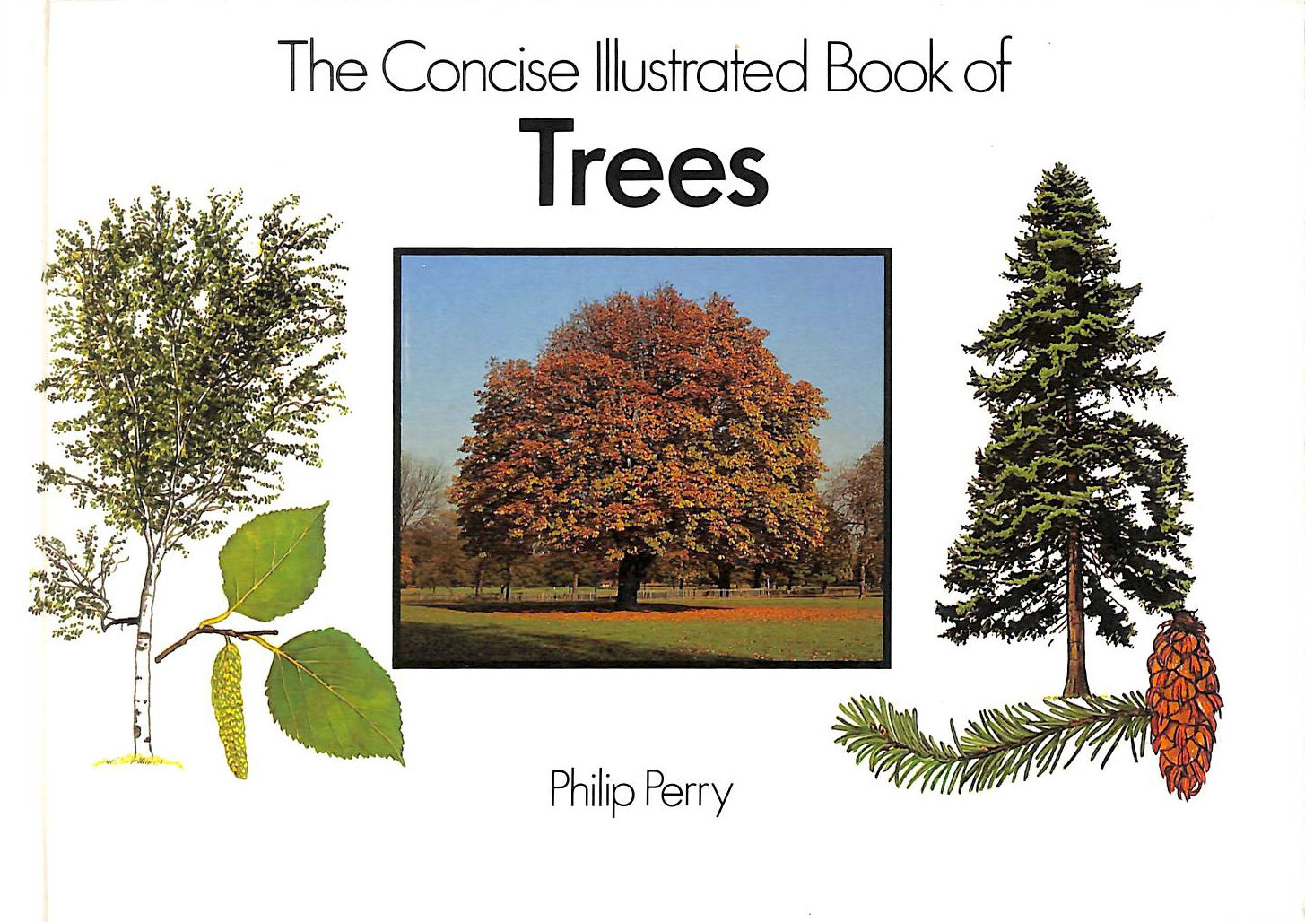Image for The Concise Illustrated Book of Trees