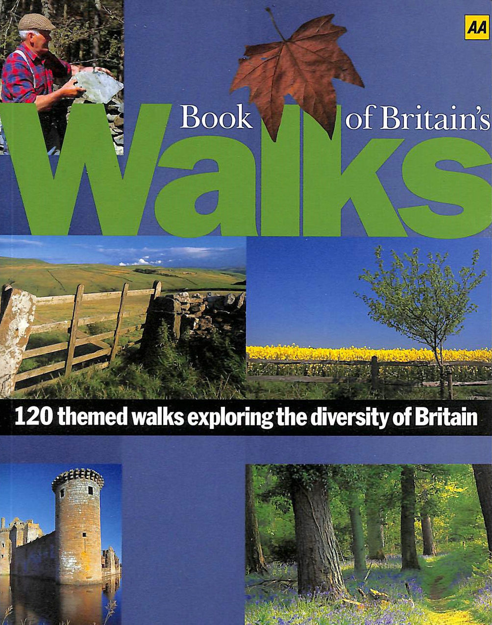 Image for AA Book of Britain's Walks