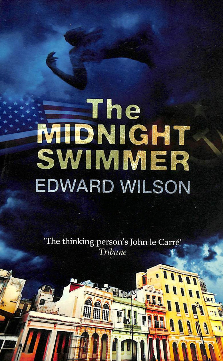Image for The Midnight Swimmer