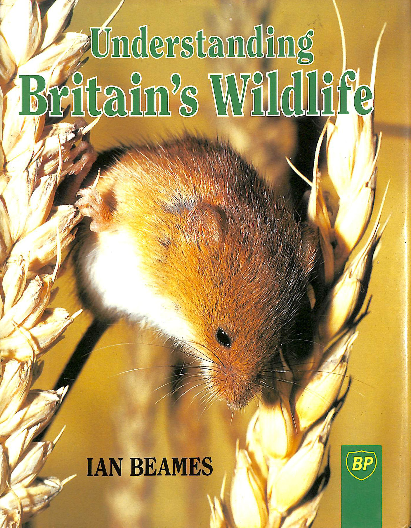 Image for Understanding Britain's Wild Life (BP Guides)