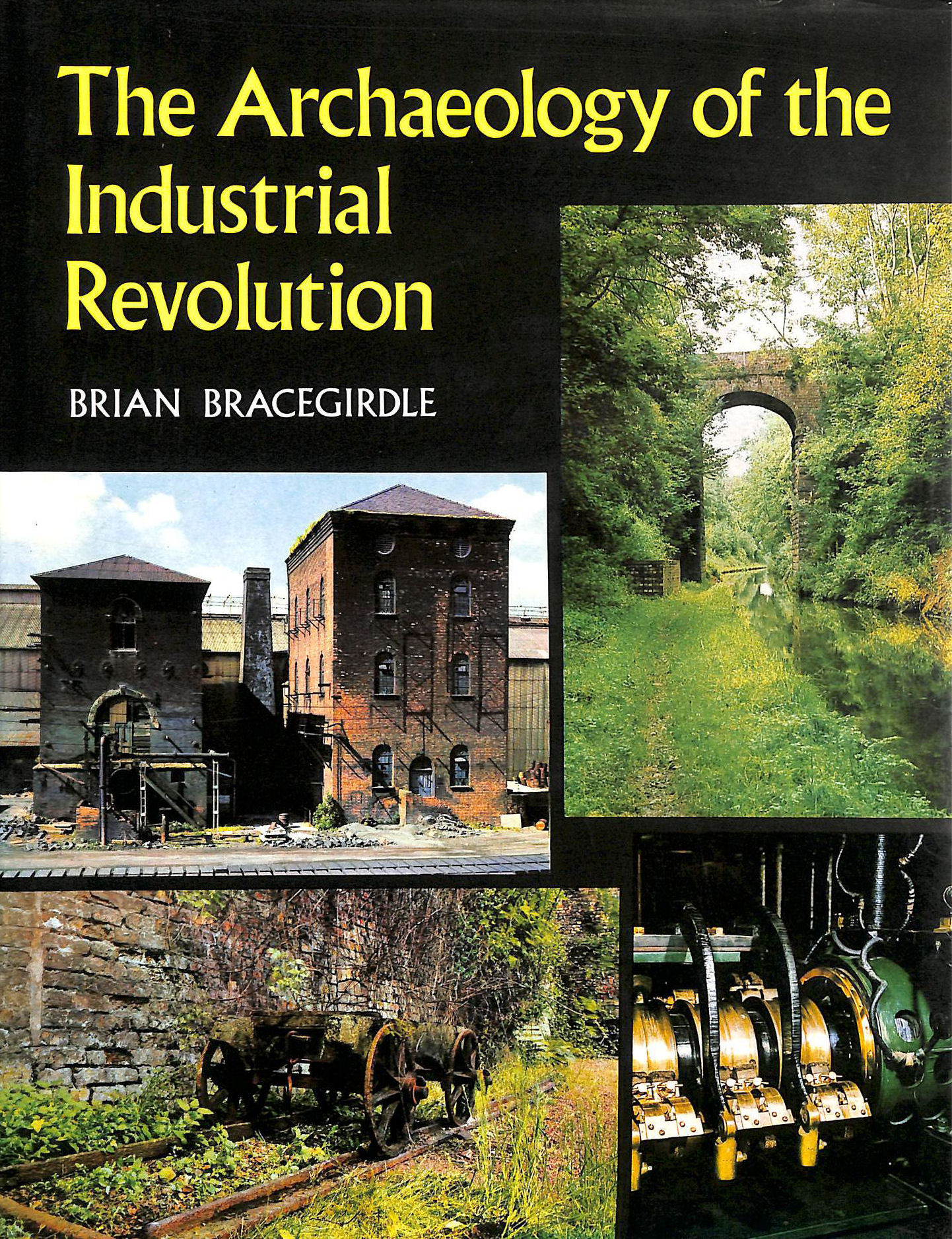 Image for The Archaeology of the Industrial Revolution