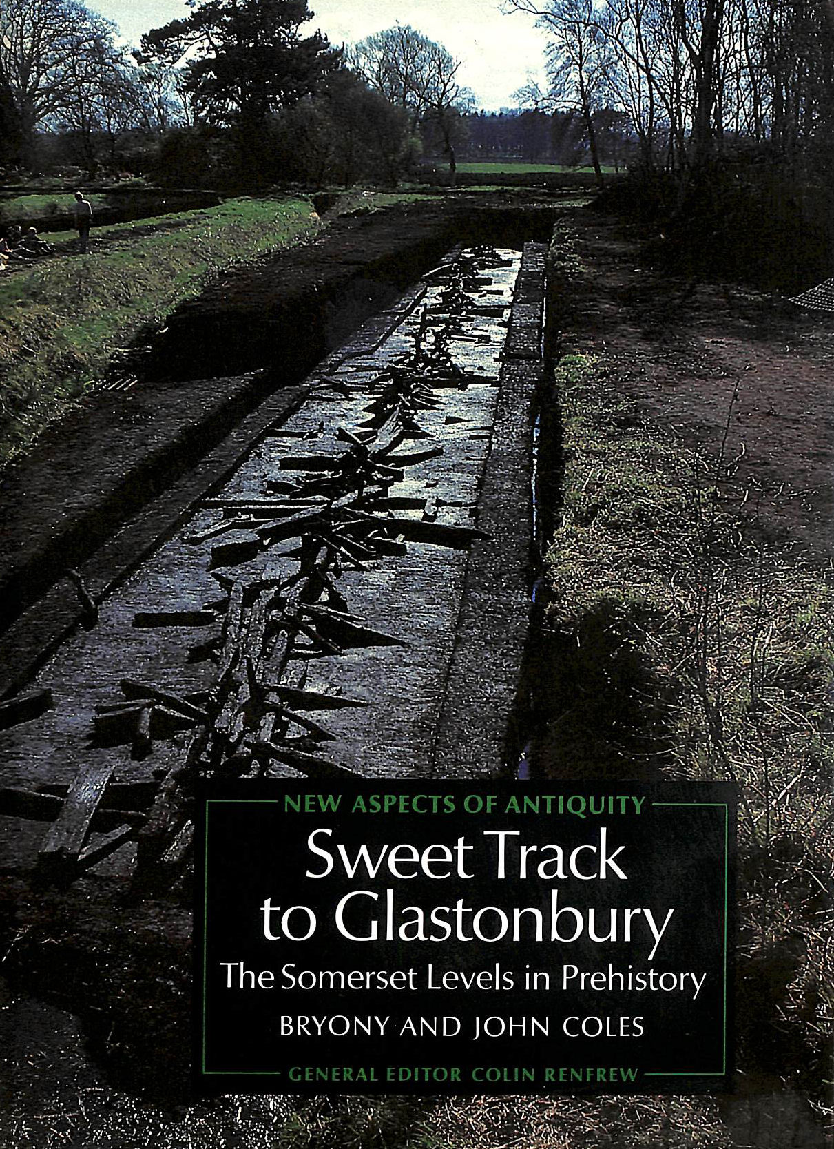 Image for Sweet Track to Glastonbury: Somerset Levels in Prehistory (New Aspects of Antiquity)