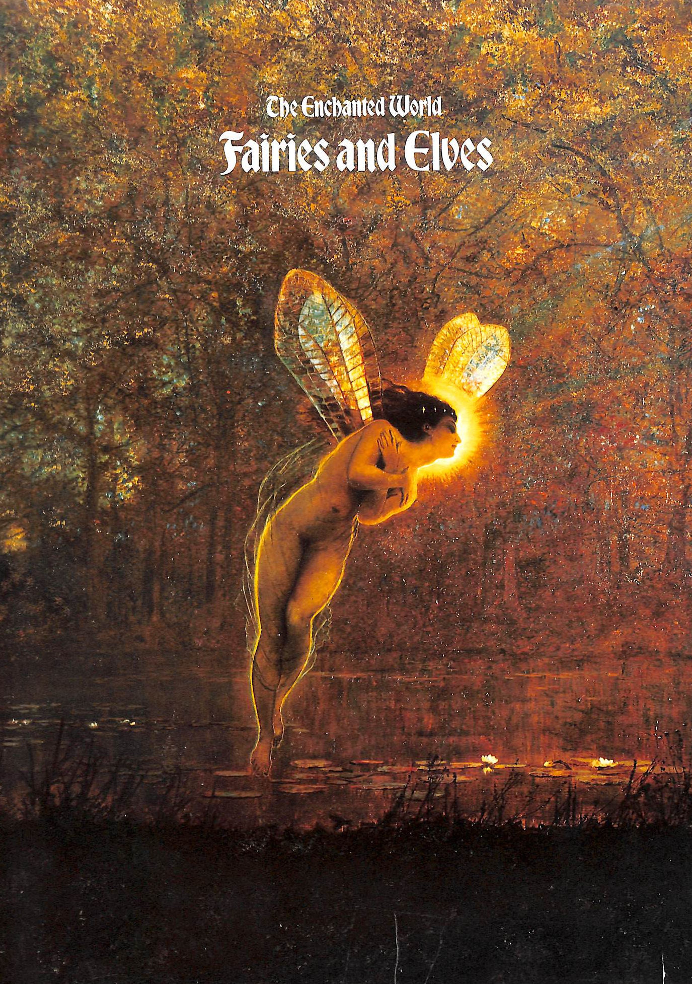 Image for Fairies and Elves