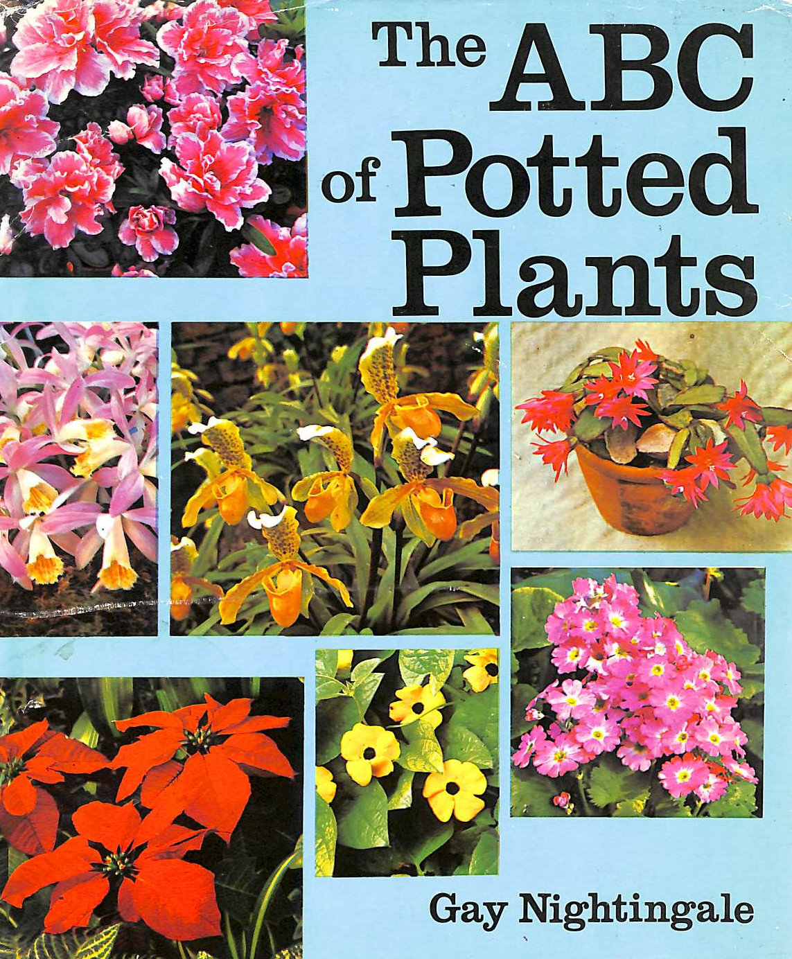 Image for A. B. C. of Potted Plants
