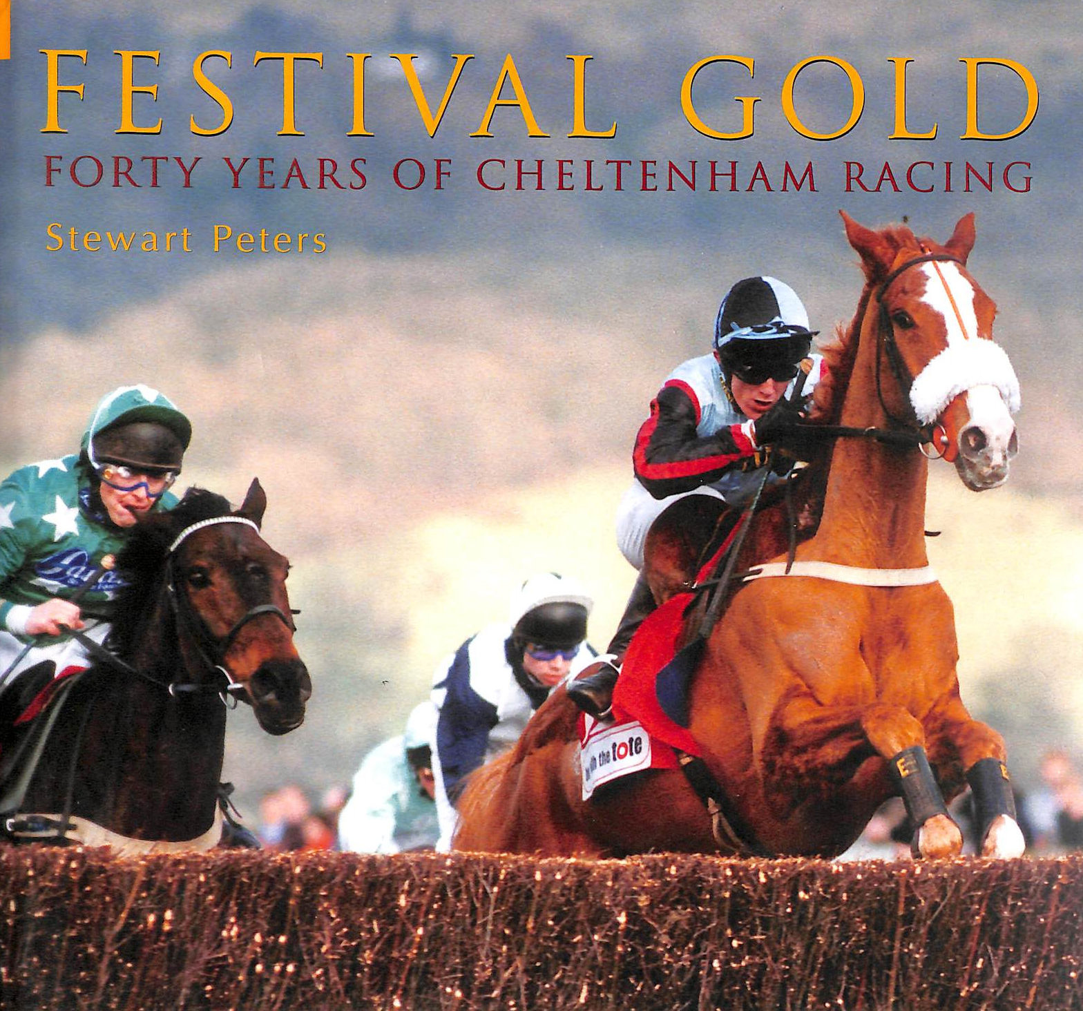 Image for Festival Gold: Forty Years of Cheltenham Racing