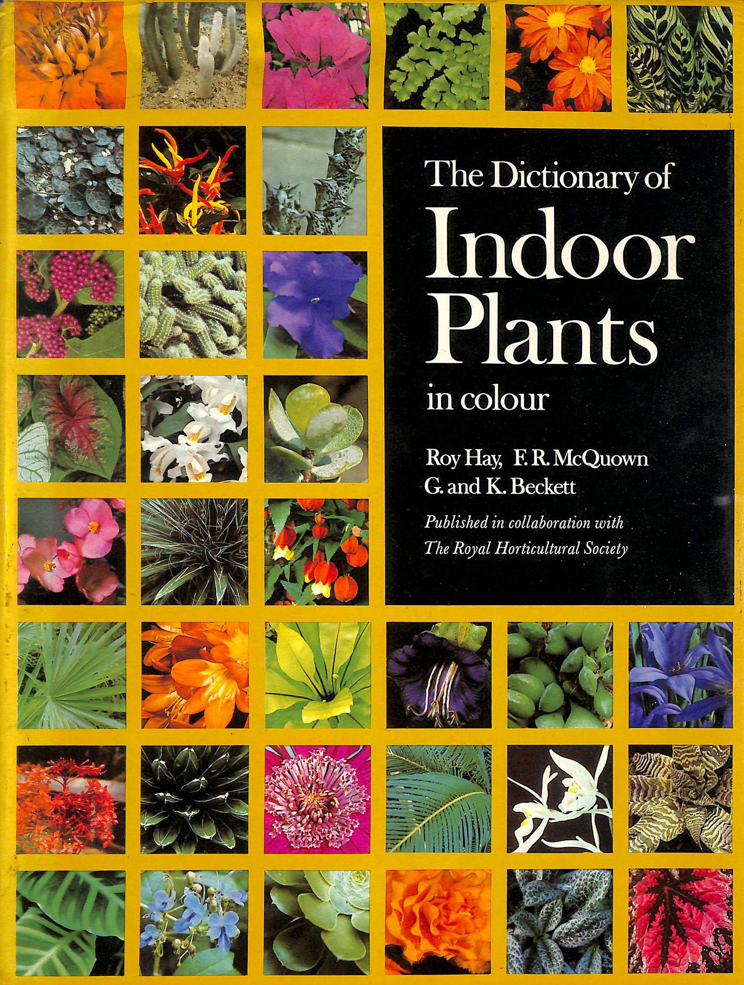 Image for Dictionary of Indoor Plants in Colour