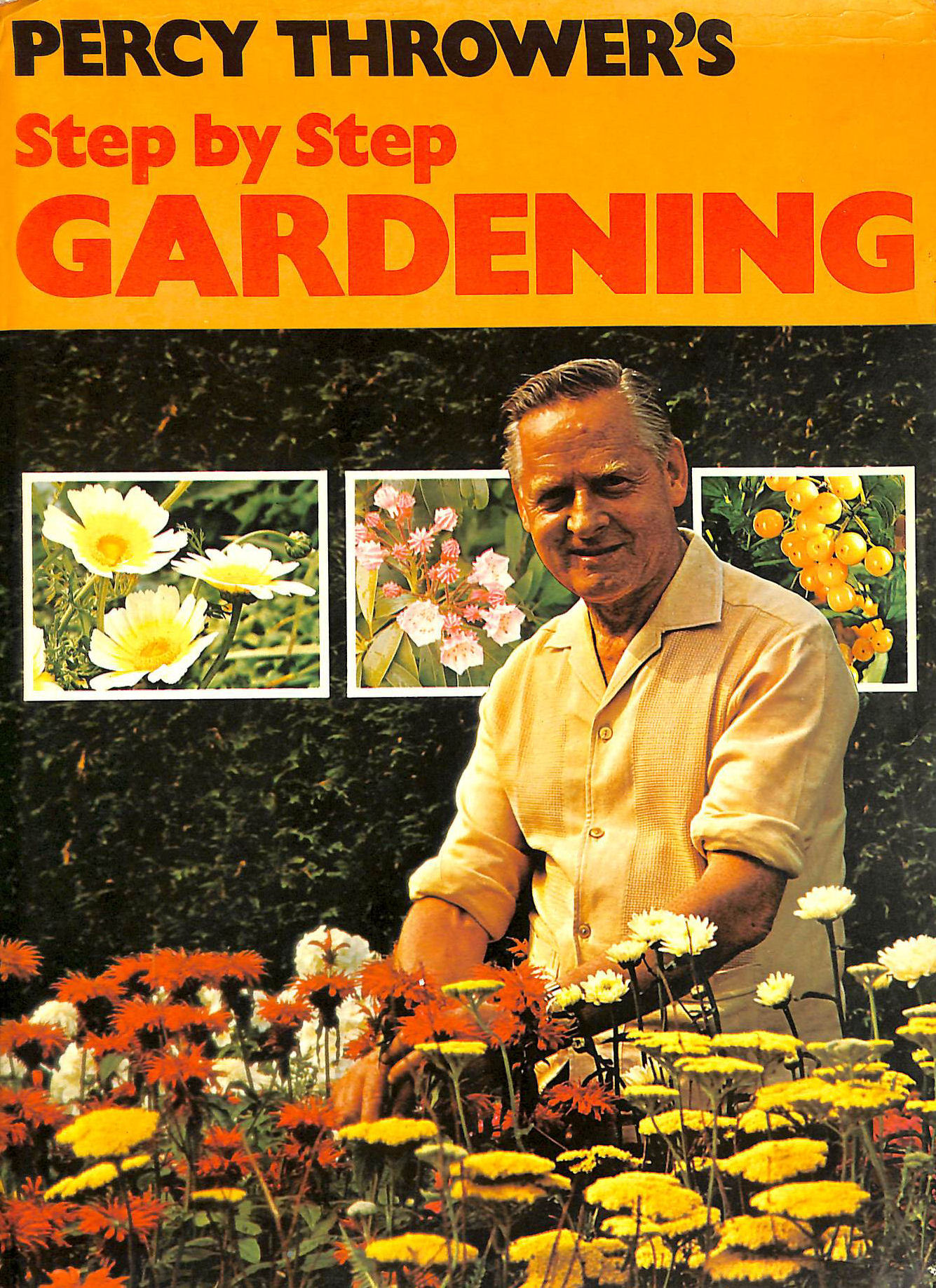 Image for STEP BY STEP GARDENING