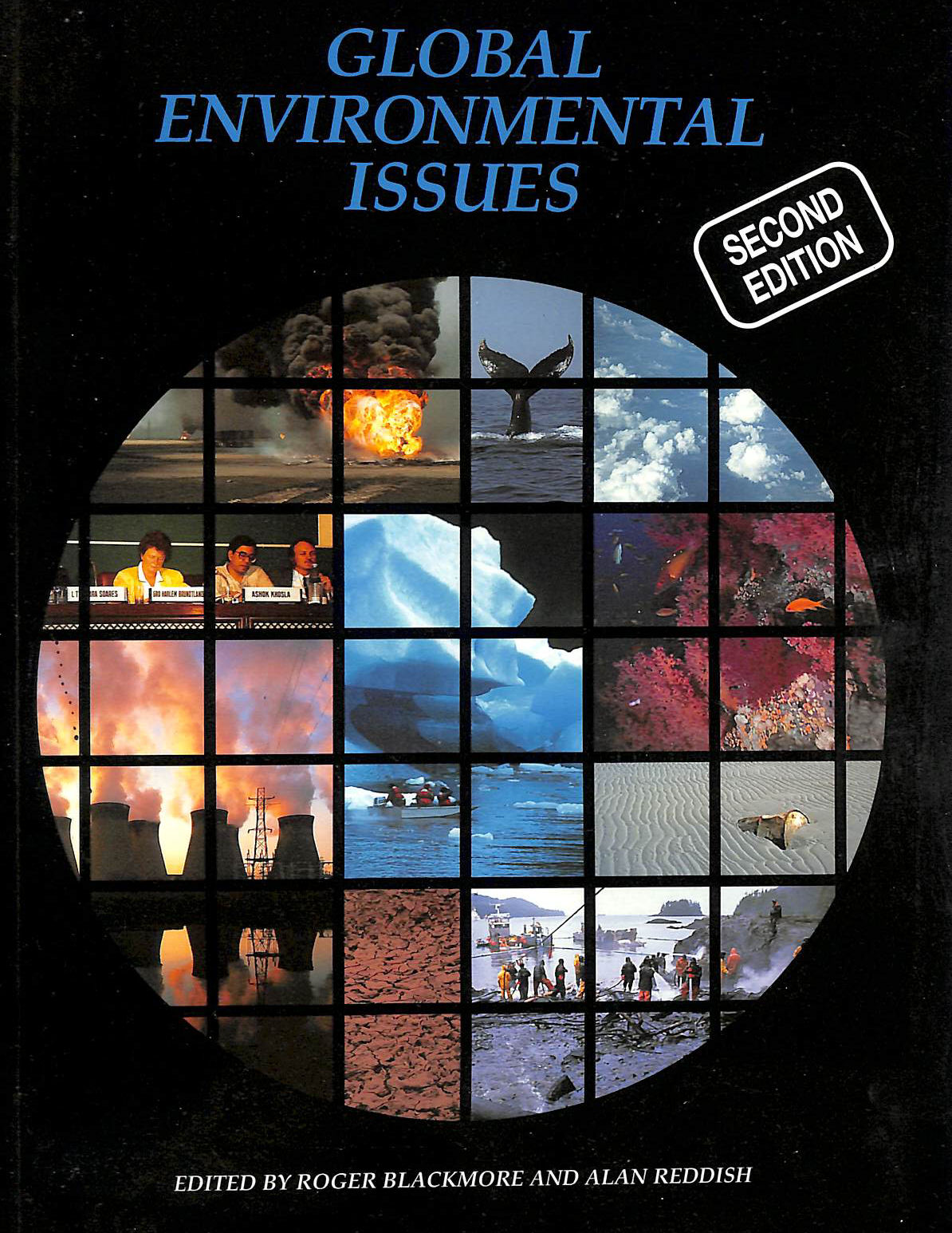 Image for Global Environmental Issues, 2nd edn (Open University U206)