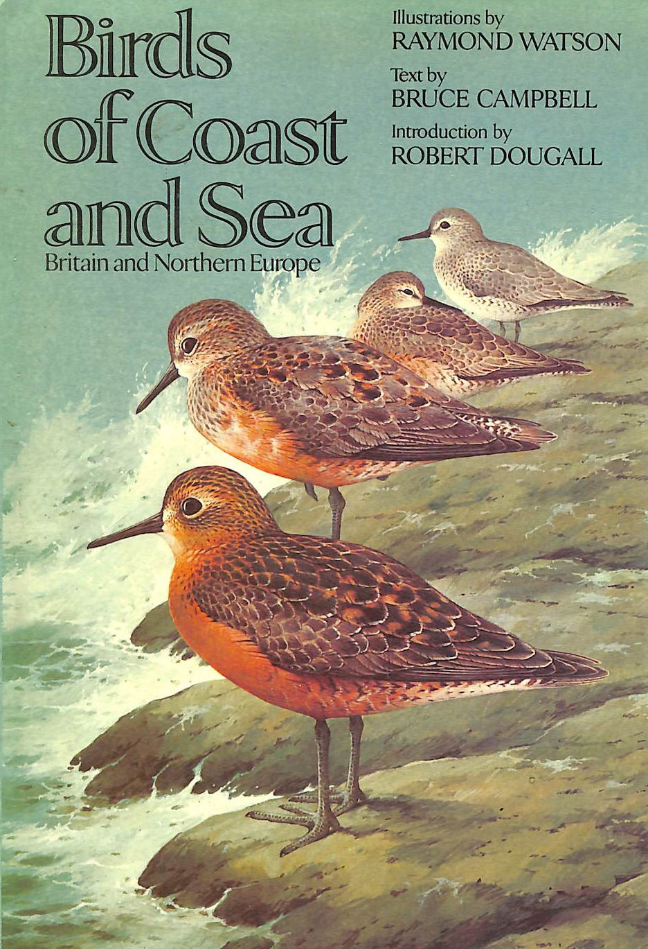 Image for Birds of Coast and Sea: Britain and Northern Europe