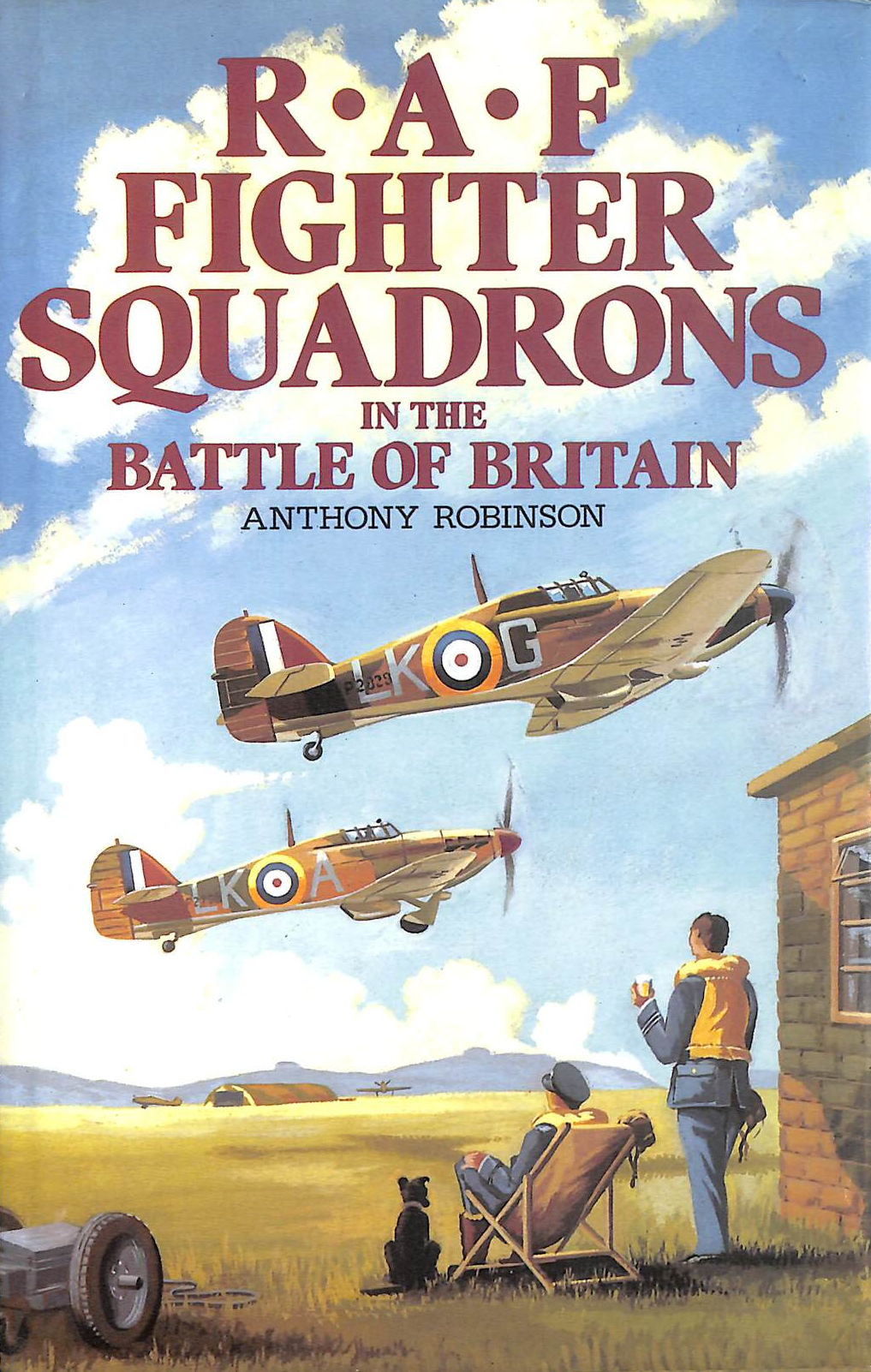 Image for RAF Fighter Squadrons in the Battle of Britain