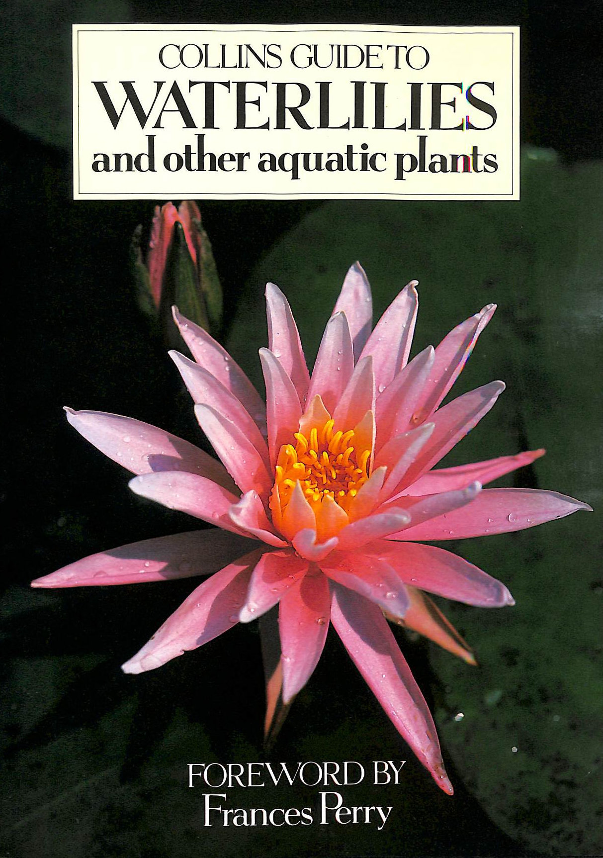 Image for Collins Guide to Waterlilies and Other Aquatic Plants