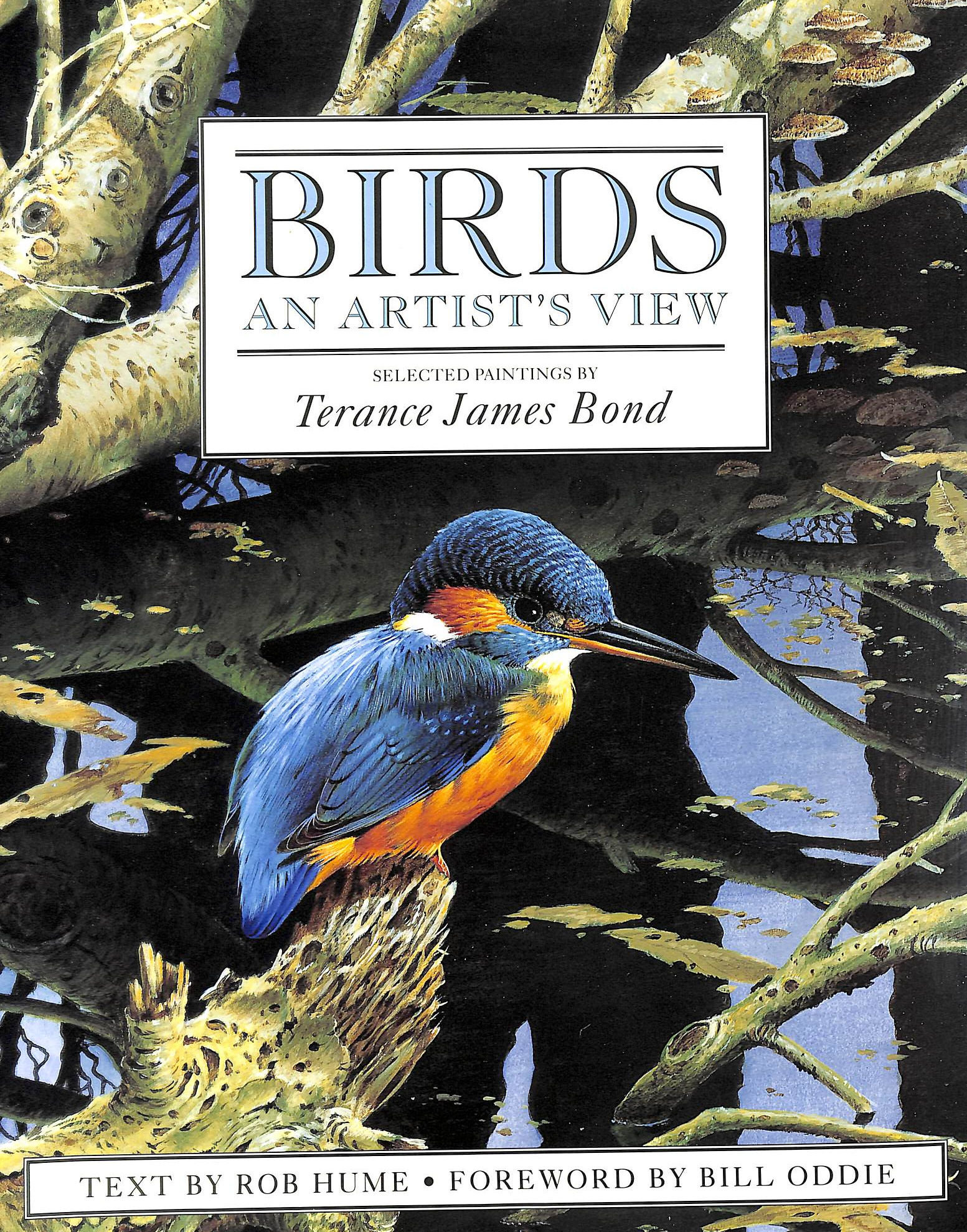 Image for Birds: an Artist's View