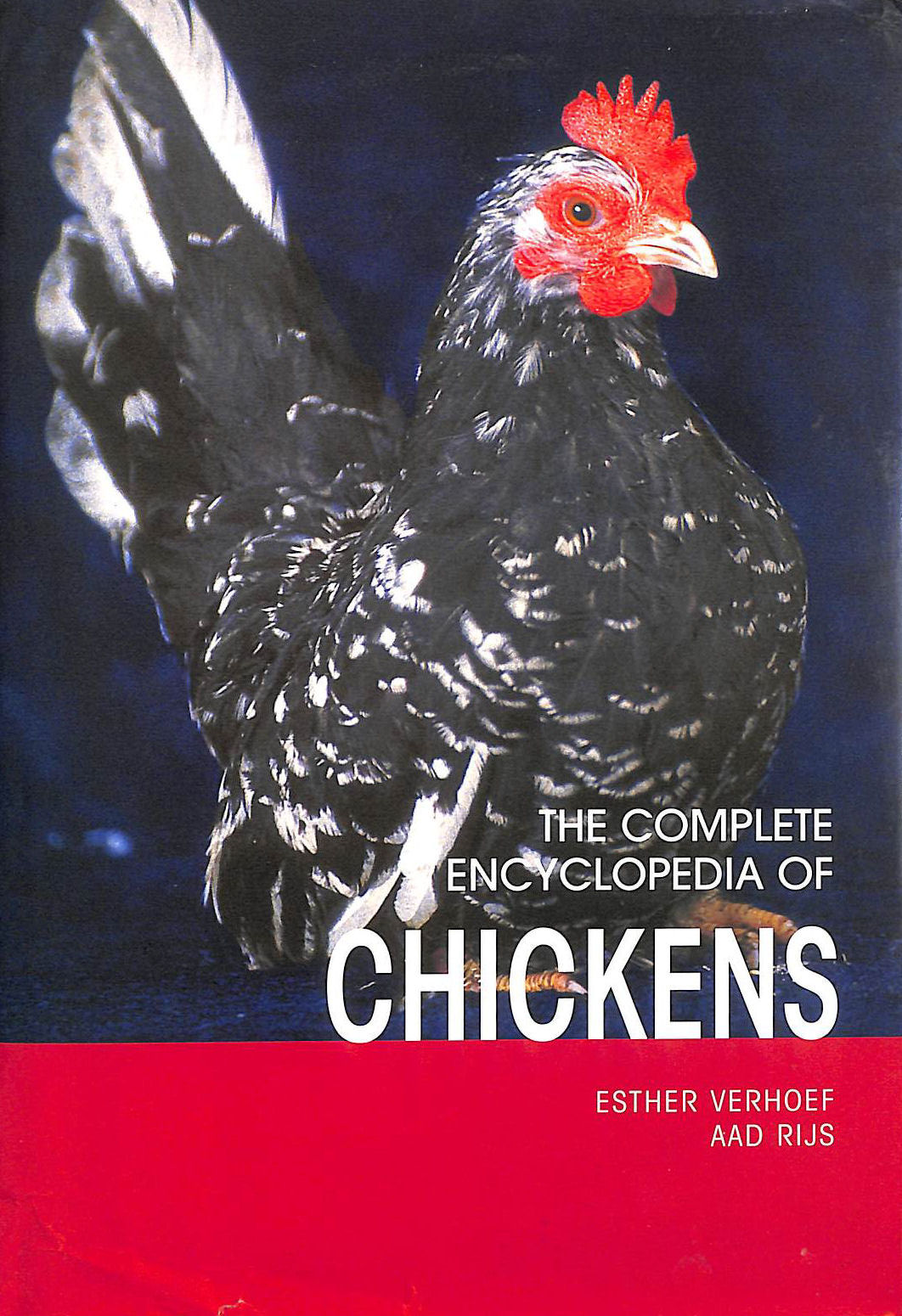 Image for Complete Encyclopedia of Chickens