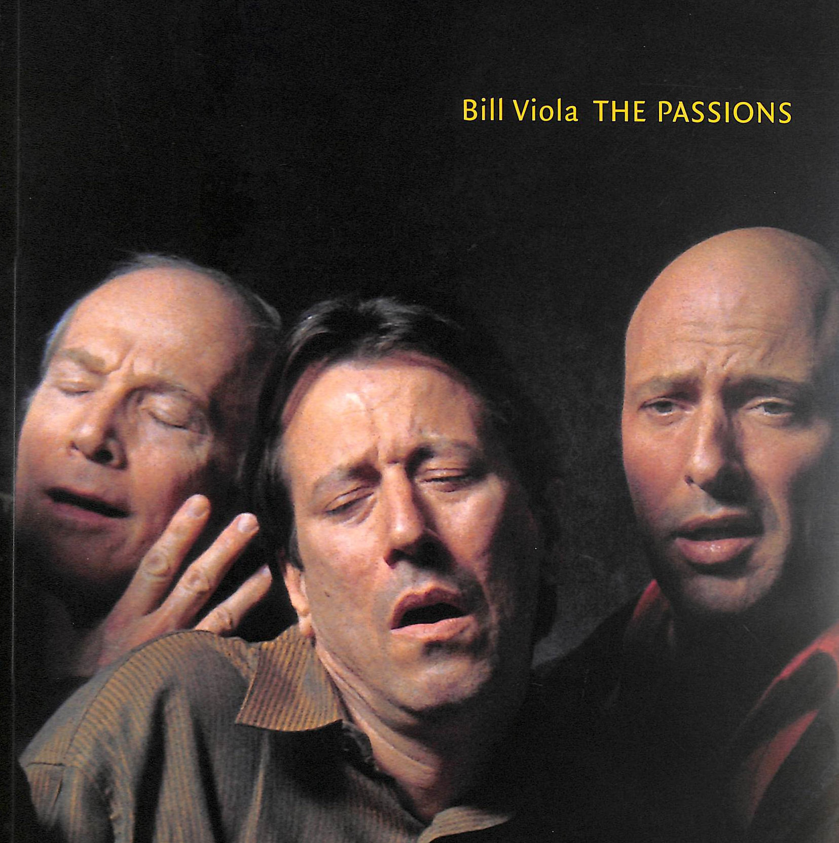 Image for Bill Viola: The Passions