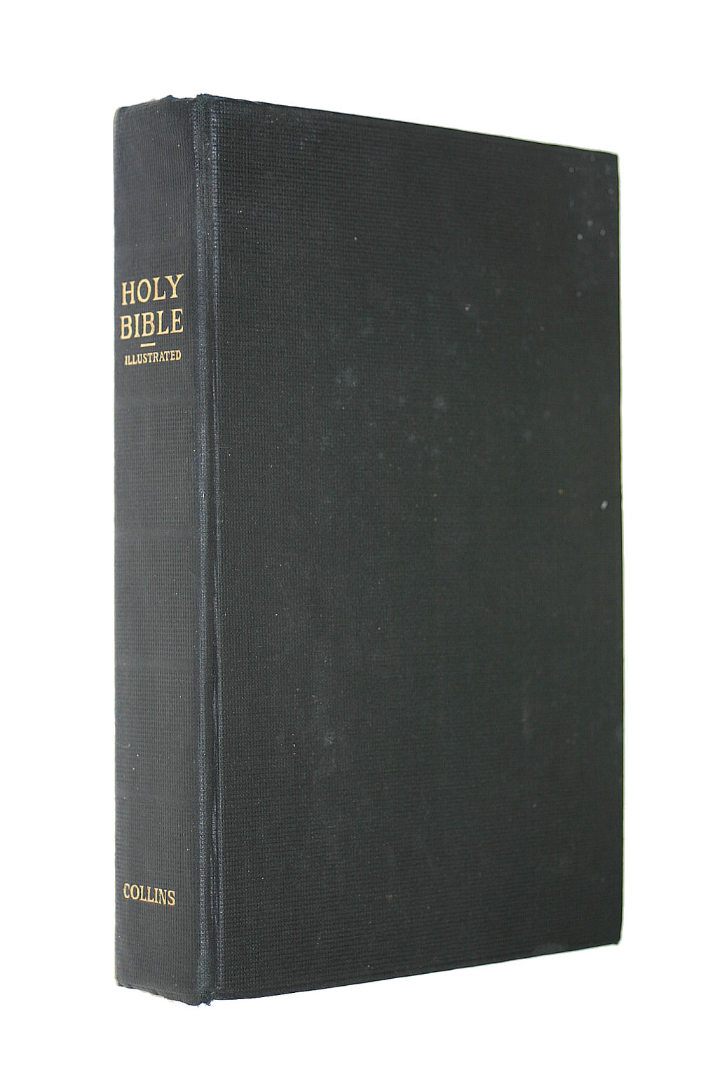 Image for Holy Bible Illustrated containing Old and New Testaments. Authorised King James Version