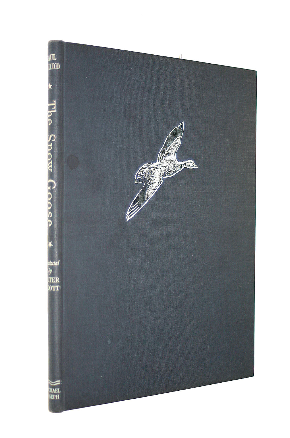 Image for THE SNOW GOOSE.