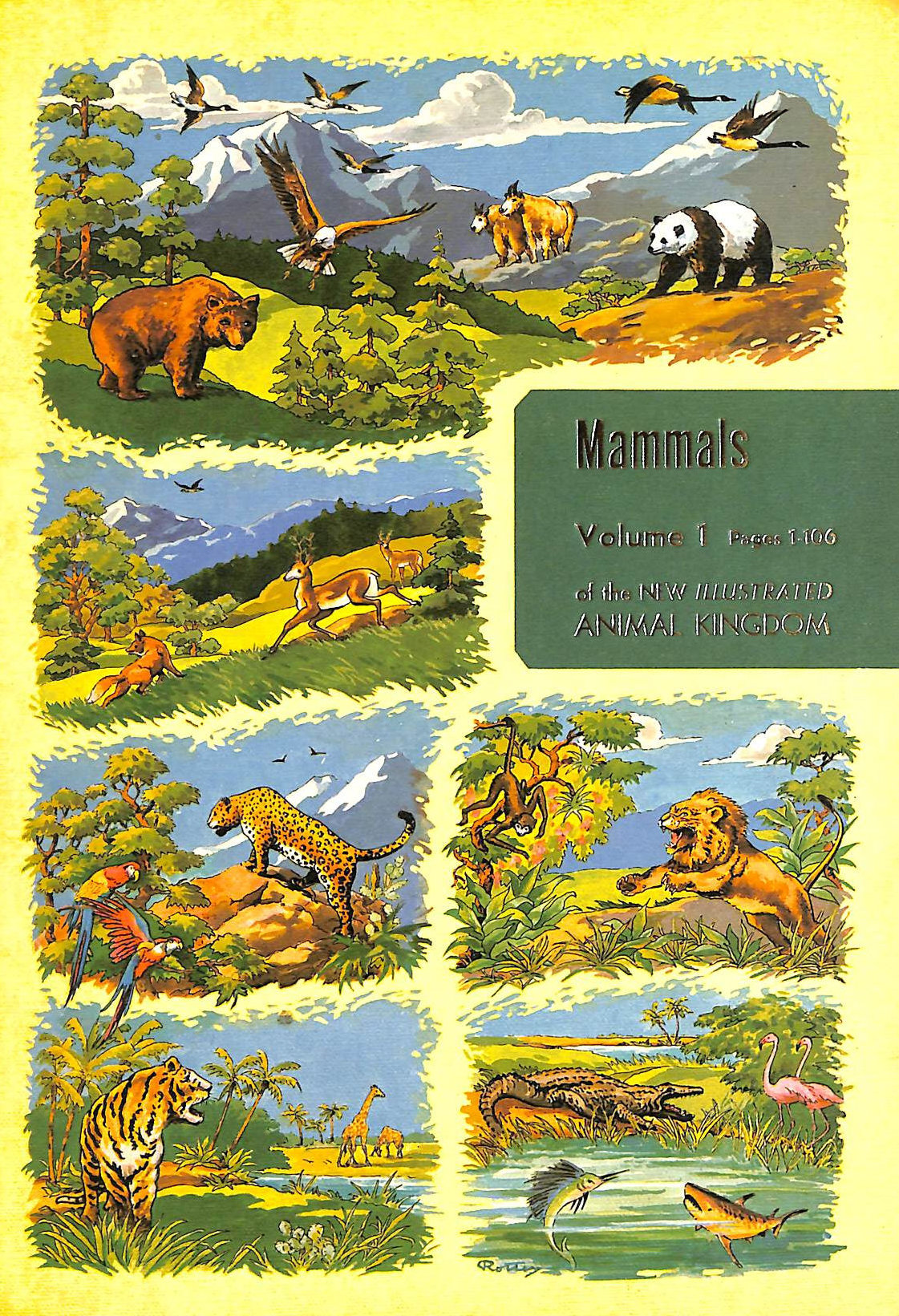 Image for Mammals Volume 1 of the new illustrated Animal Kingdom