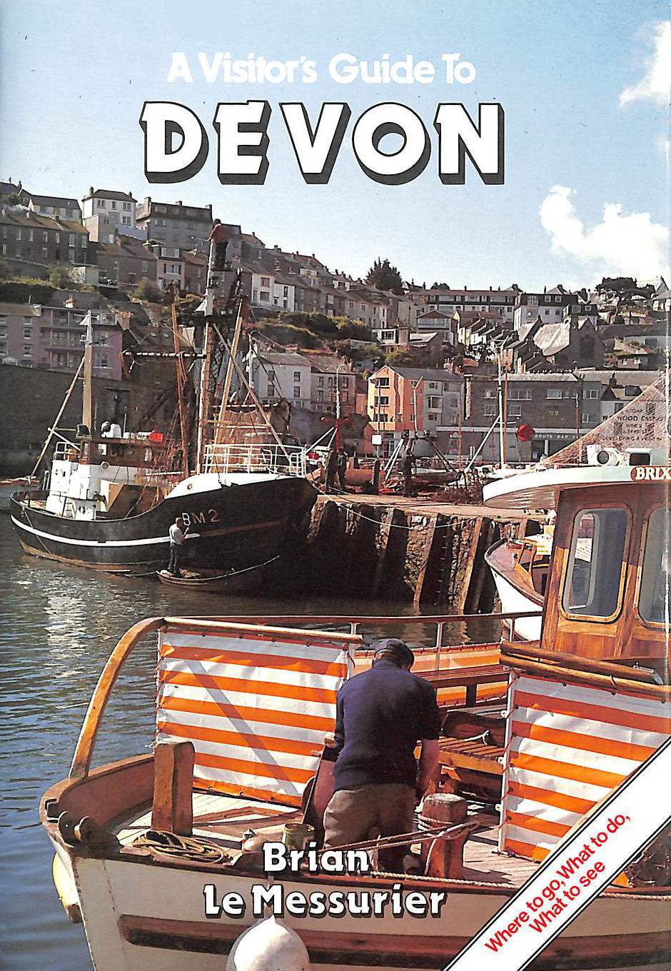 Image for Visitor's Guide Devon (Visitor's guide series)