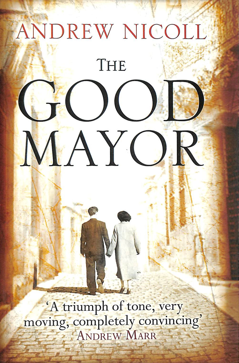 Image for The Good Mayor