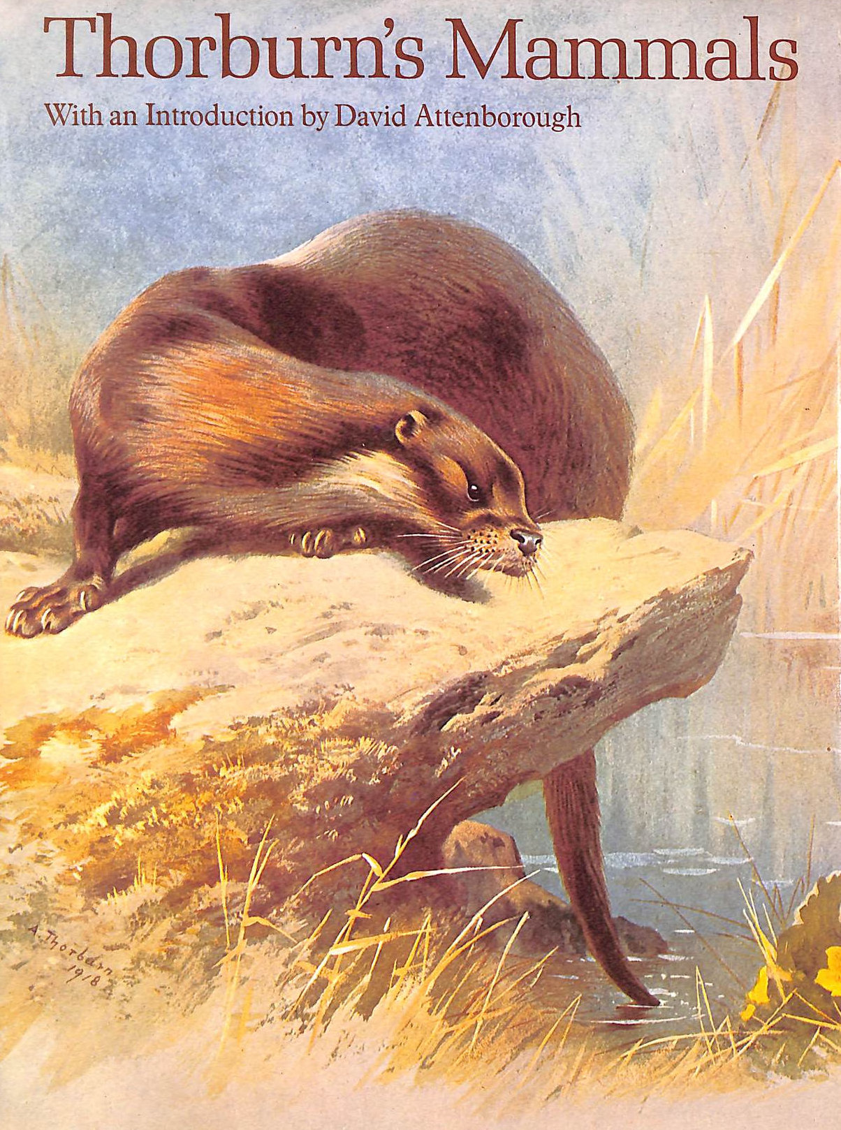 Image for Thorburn's Mammals With Introduction By David Attenborough