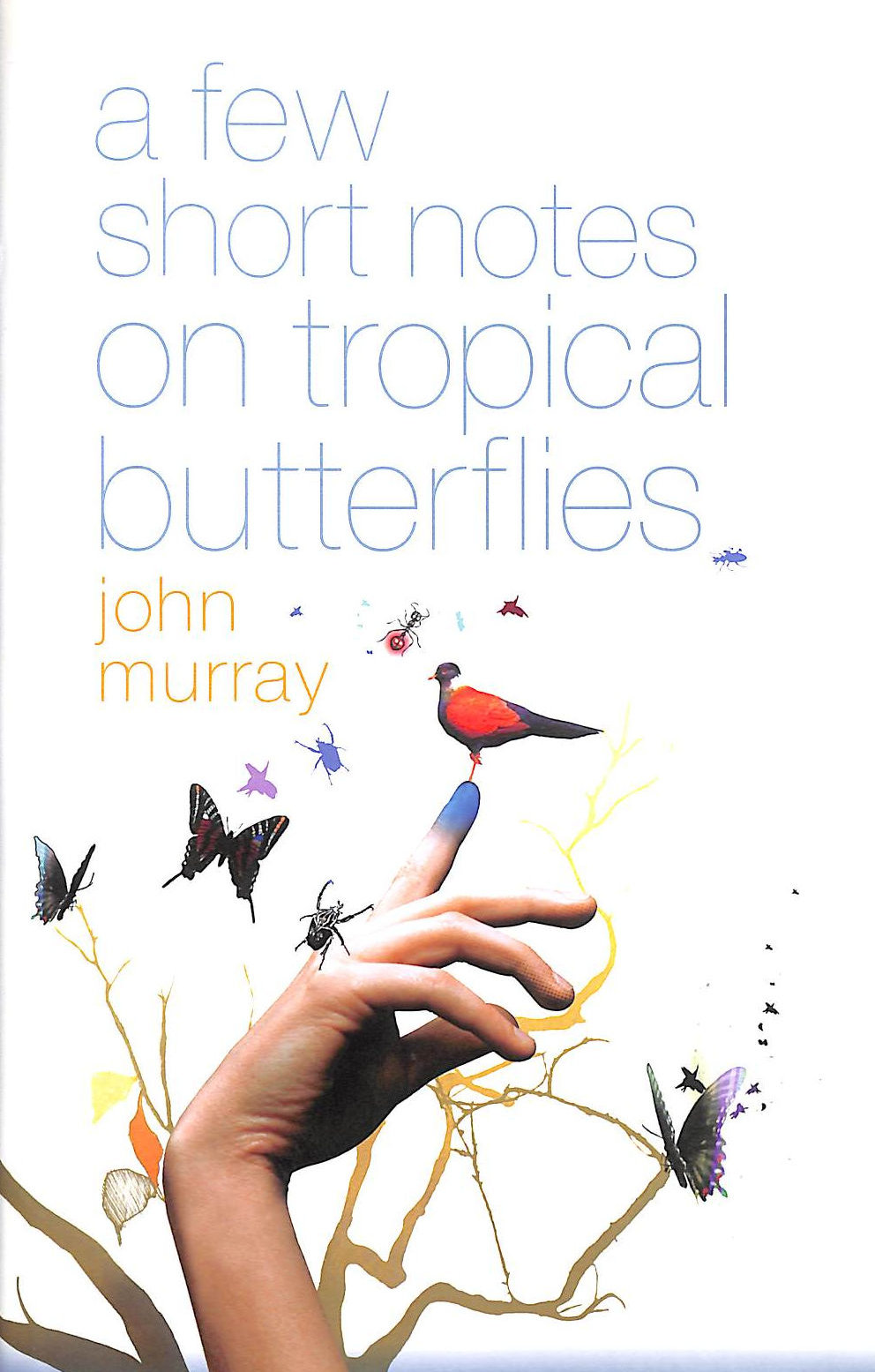 Image for A Few Short Notes On Tropical Butterflies