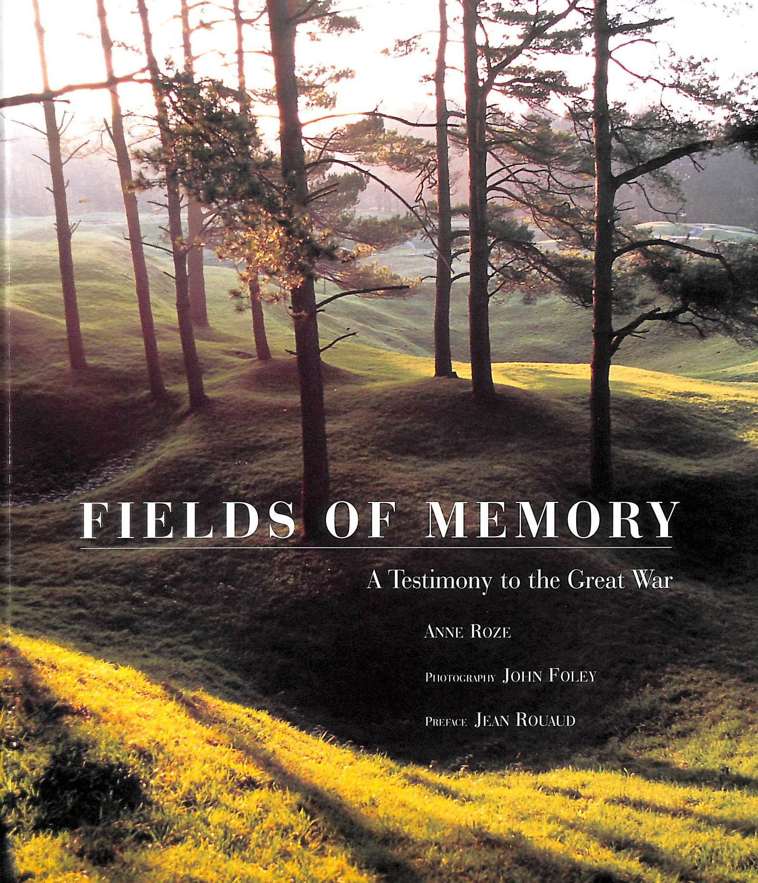 Image for Fields Of Memory: A Testimony To The Great War