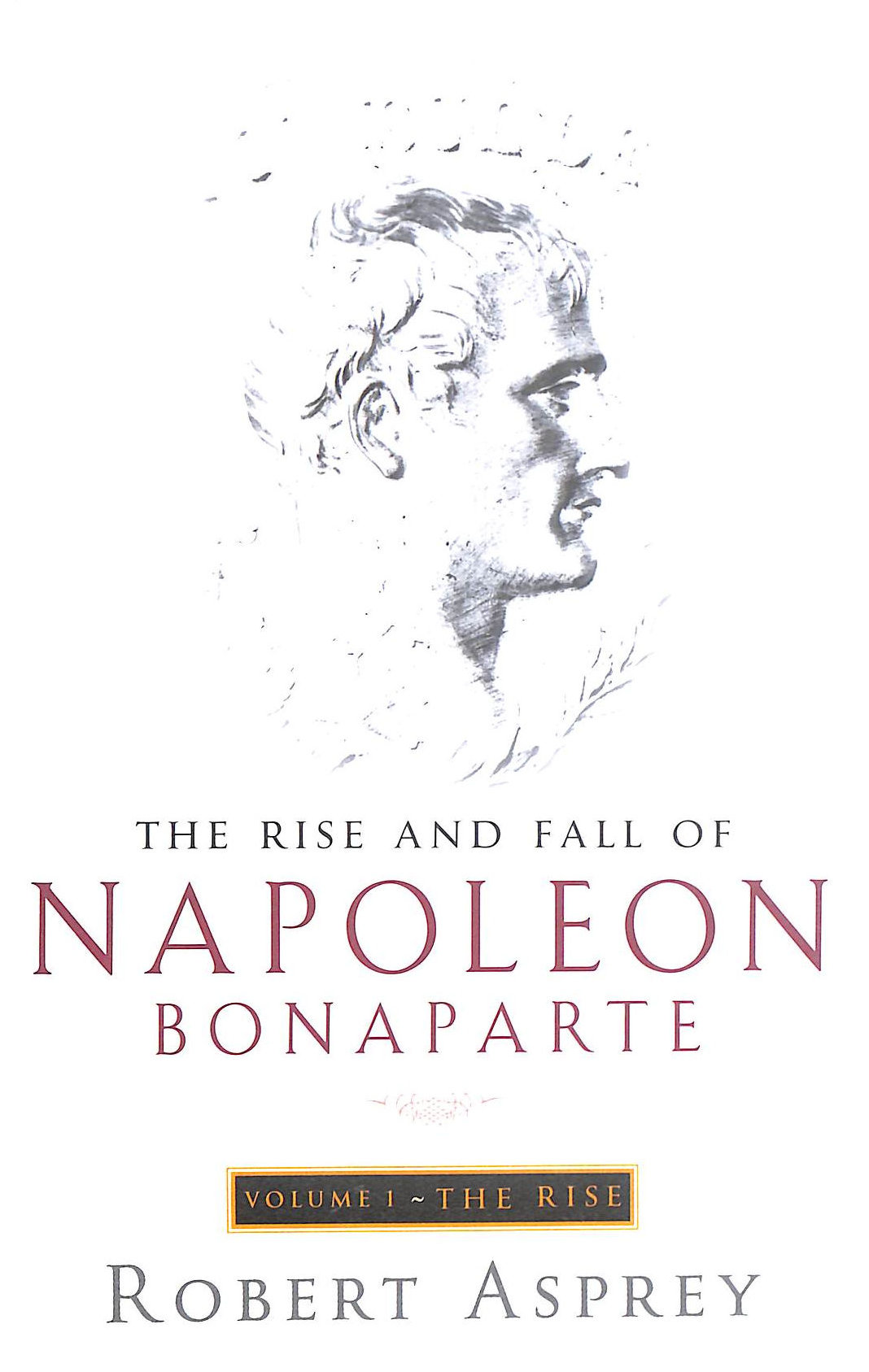 Image for The Rise And Fall Of Napoleon Vol 1: The Rise V. 1 (The Rise And Fall Of Napoleon Bonaparte)
