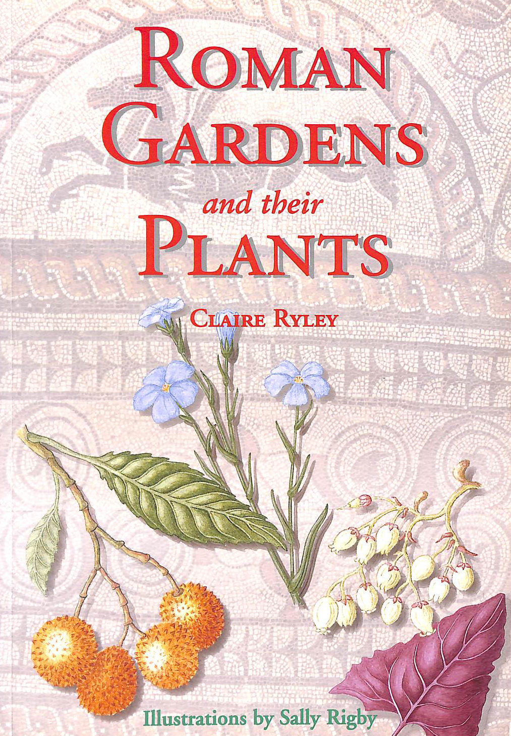 Image for Roman Gardens And Their Plants