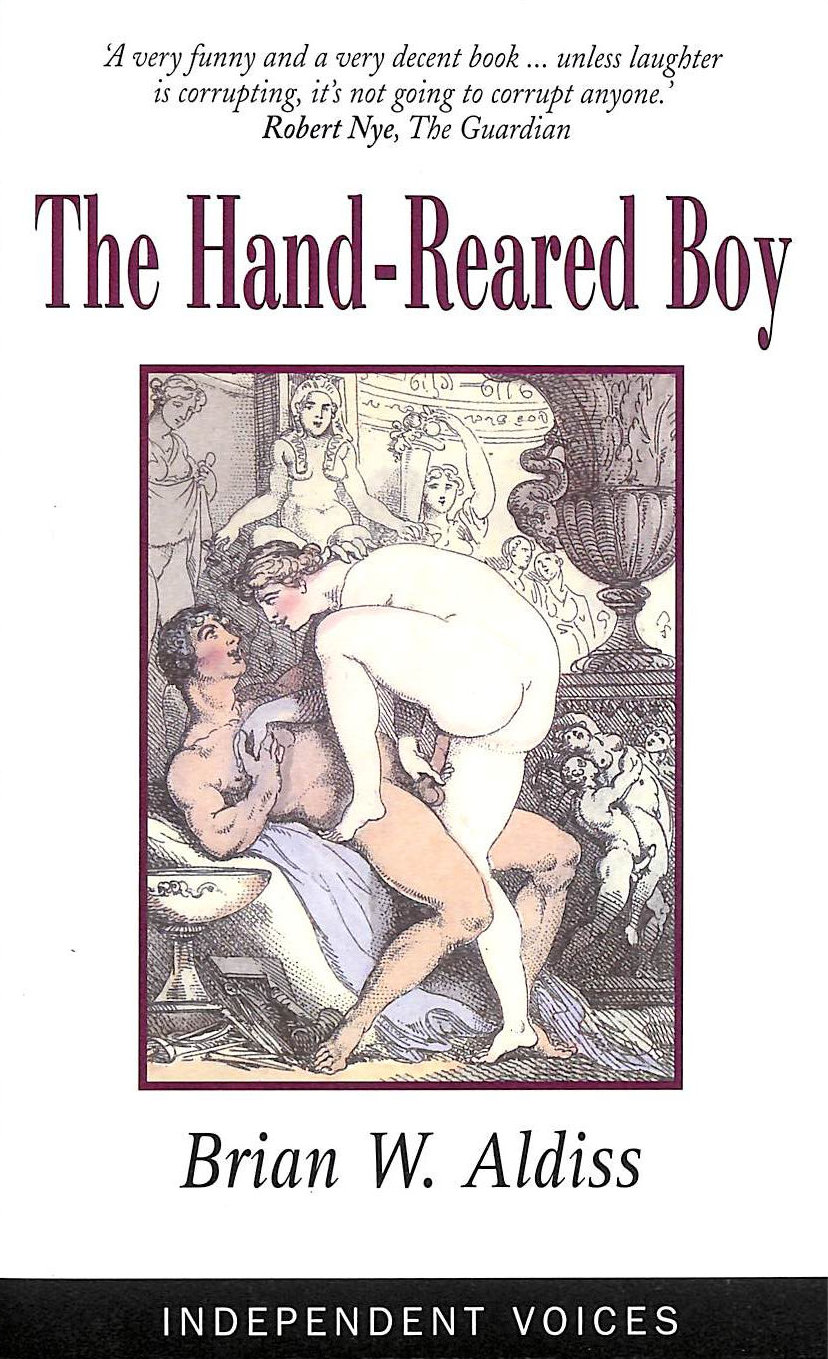 Image for The Hand-Reared Boy (Independent Voices)