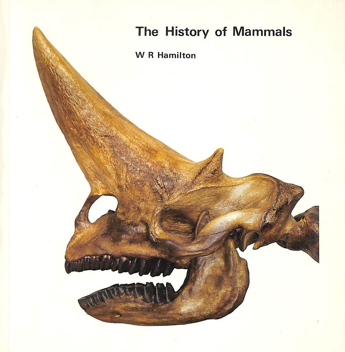 Image for History Of Mammals