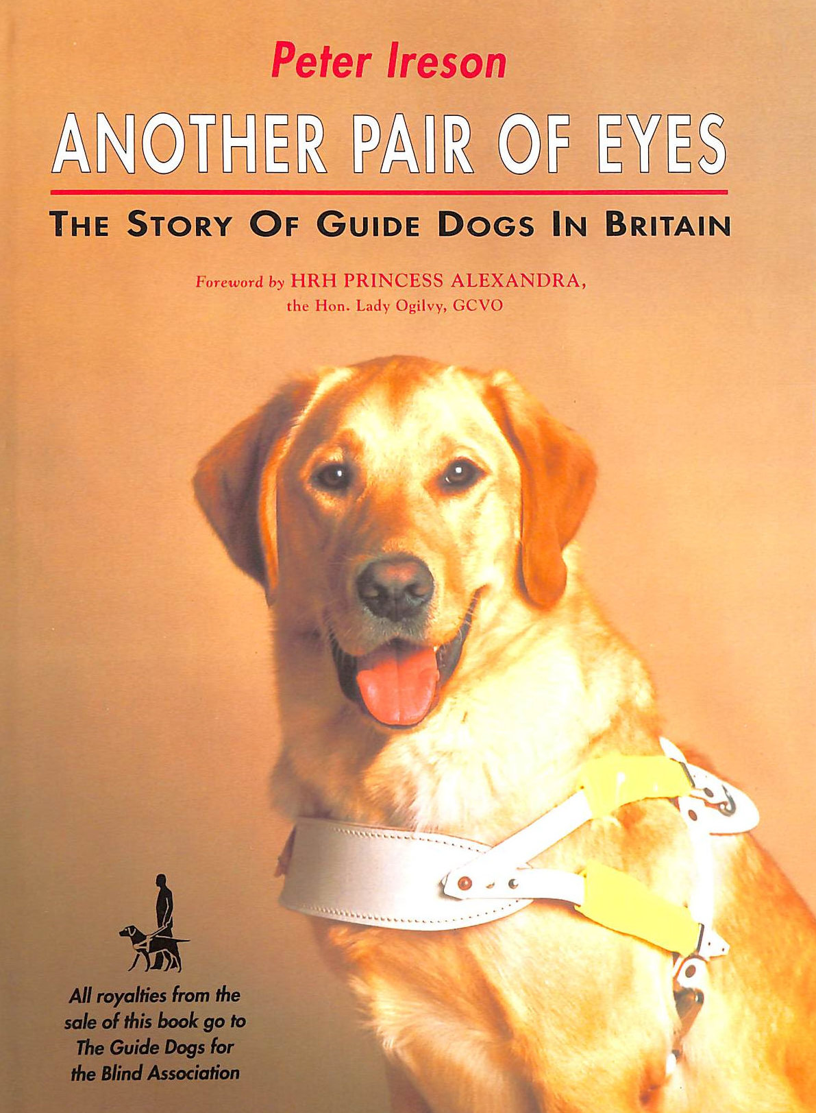 Image for Another Pair Of Eyes: The Story Of Guide Dogs In Britain