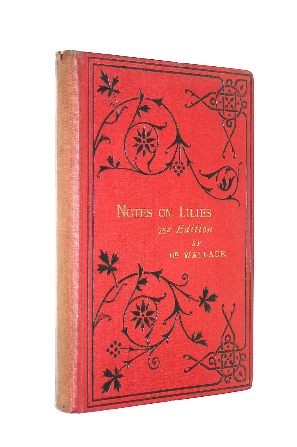 Image for Notes On Lilies And Their Culture