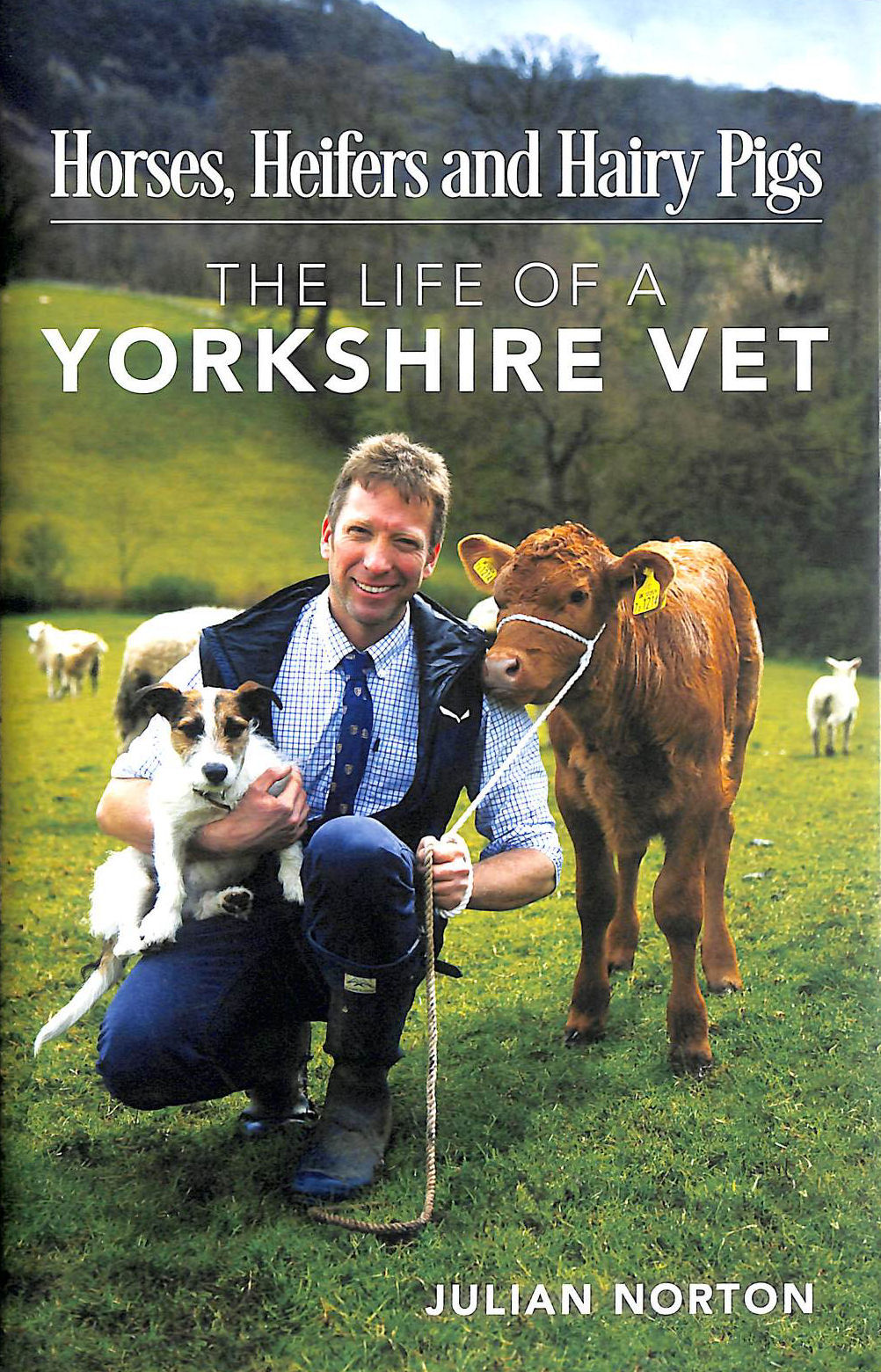 Image for Horses, Heifers And Hairy Pigs: The Life Of A Yorkshire Vet