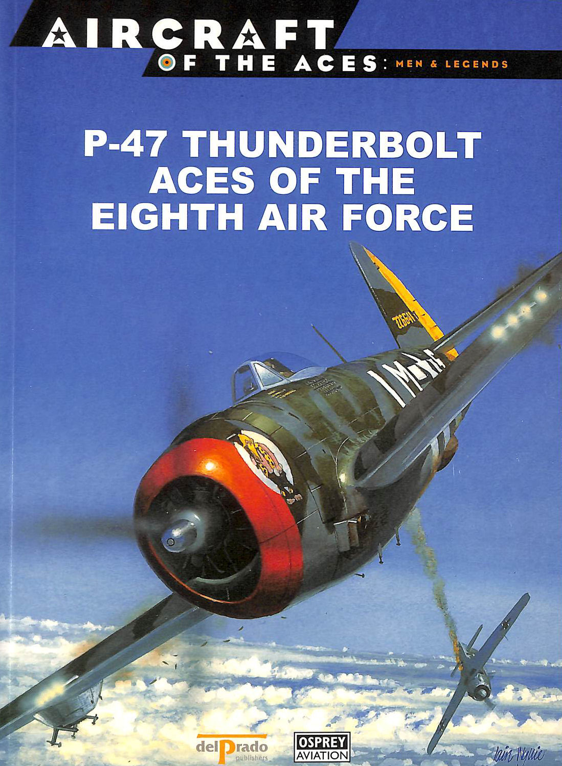 Image for P-47 Thunderbolt Aces Of The Eighth Air Force