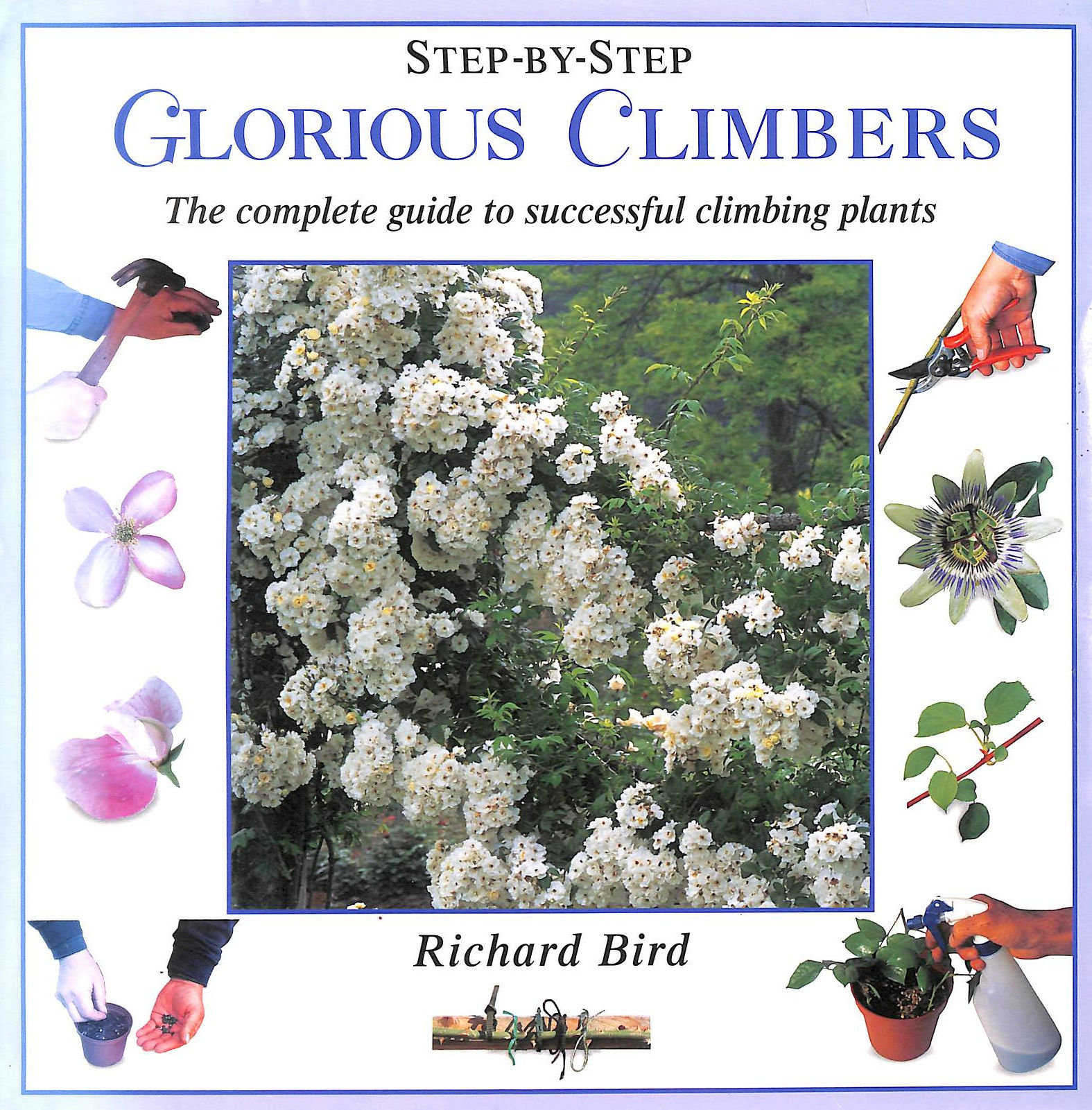 Image for Glorious Climbers: The Complete Guide To Successful Climbing Plants (Step-By-Step)