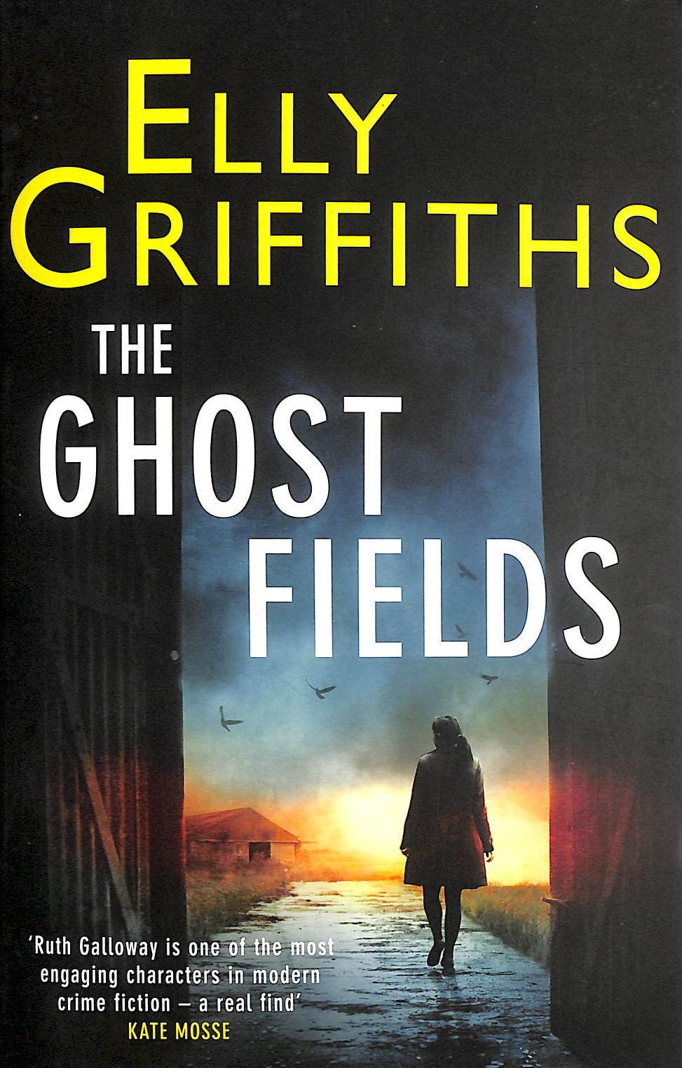 Image for The Ghost Fields: A Ruth Galloway Investigation