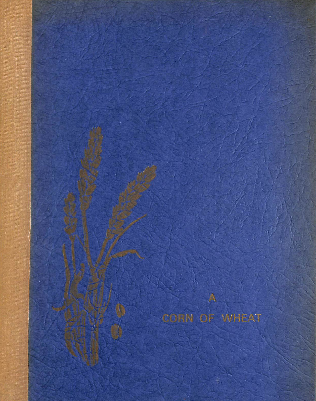 Image for A Corn Of Wheat. The Life And Times Of A. M. Gelsthorpe. D.D., D.S.O. Assistant Bishop On The Niger. Bishop In The Sudan. Assistant Bishop Of Southwell