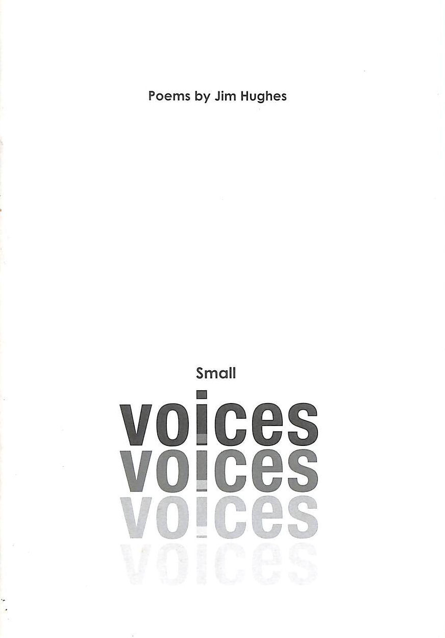 Image for Small Voices