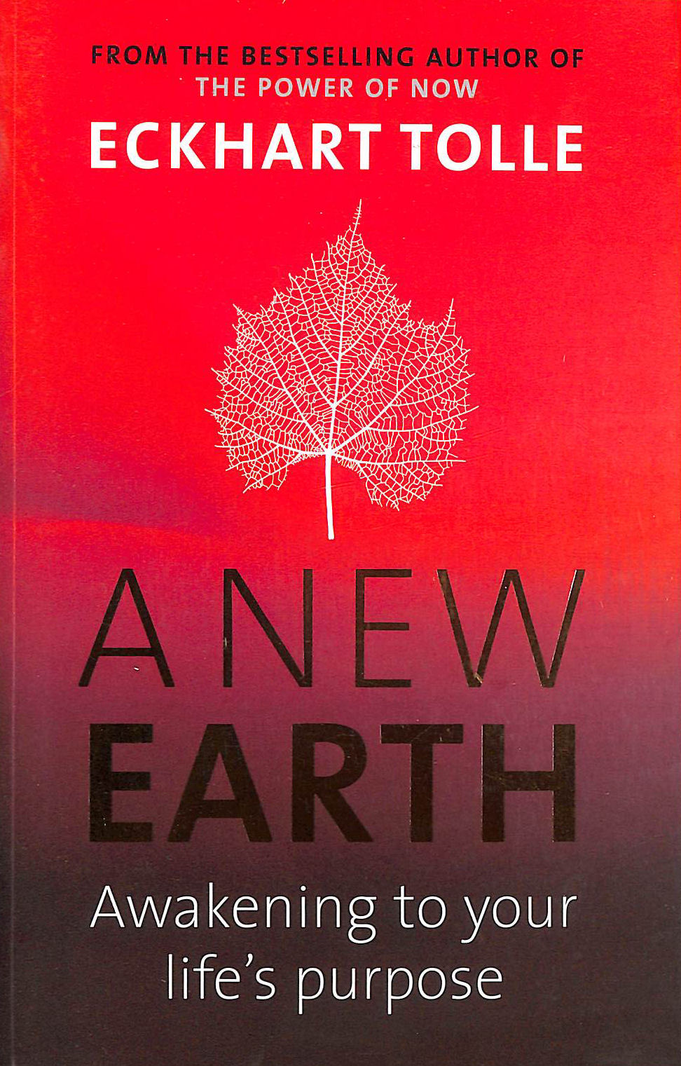 Image for A New Earth: Awakening To Your Life's Purpose