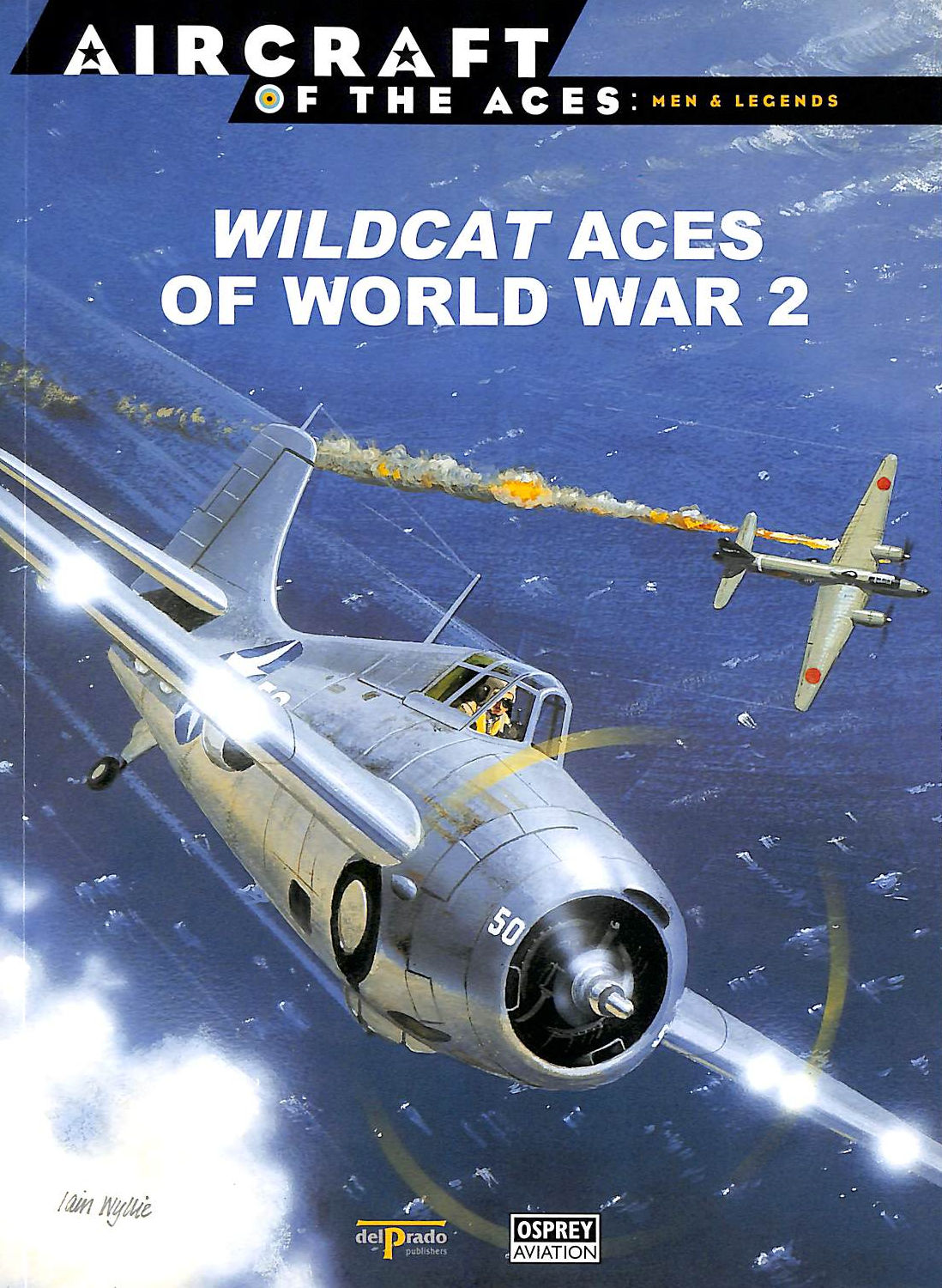 Image for Wildcat Aces Of World War 2 [Aircraft Of The Aces: Men & Legends: 12]