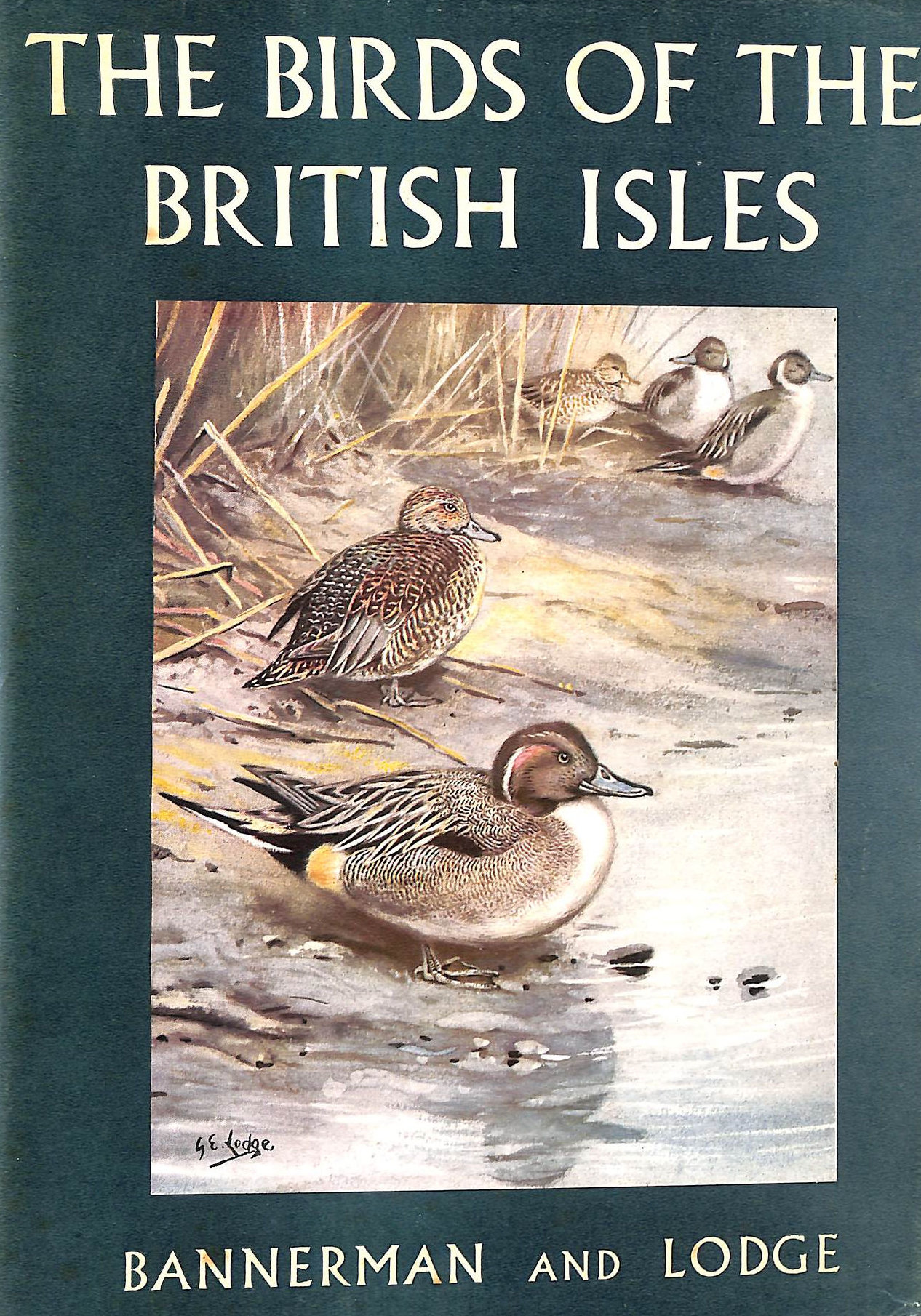 Image for The Birds Of The British Isles: Volume Vii (7)