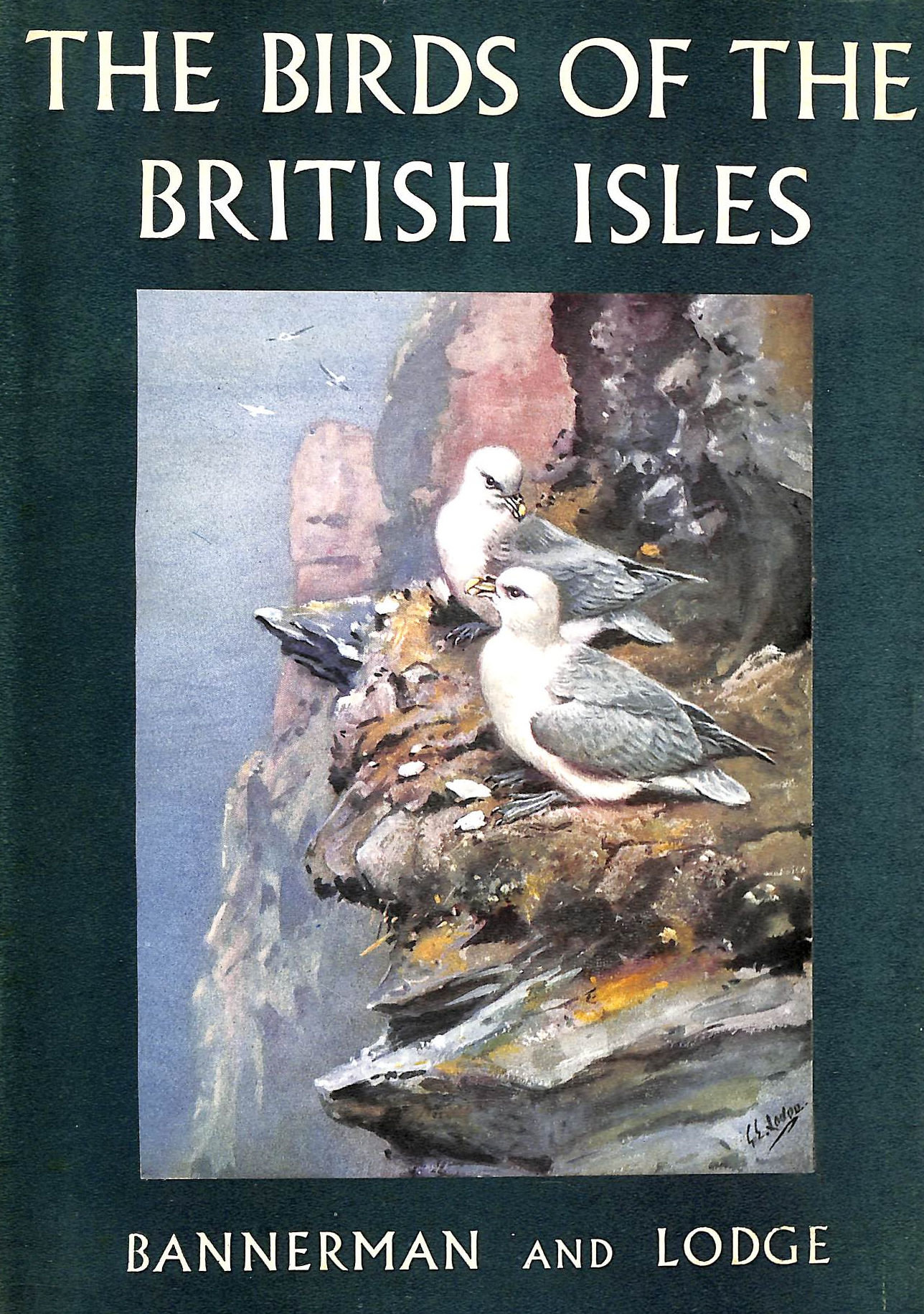 Image for The Birds Of The British Isles: Volume Viii (8)